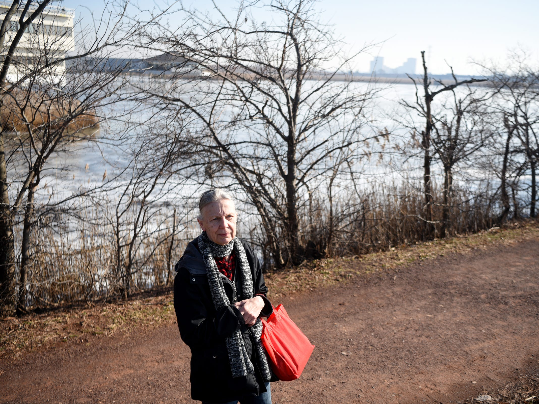 Nancy Galambos of Passaic takes in the view along the Transco Trail in the Lyndhurst Nature Preserve during a wintering birds and nature walk hosted by the Bergen County Audubon Society on Sunday, February 3, 2019.