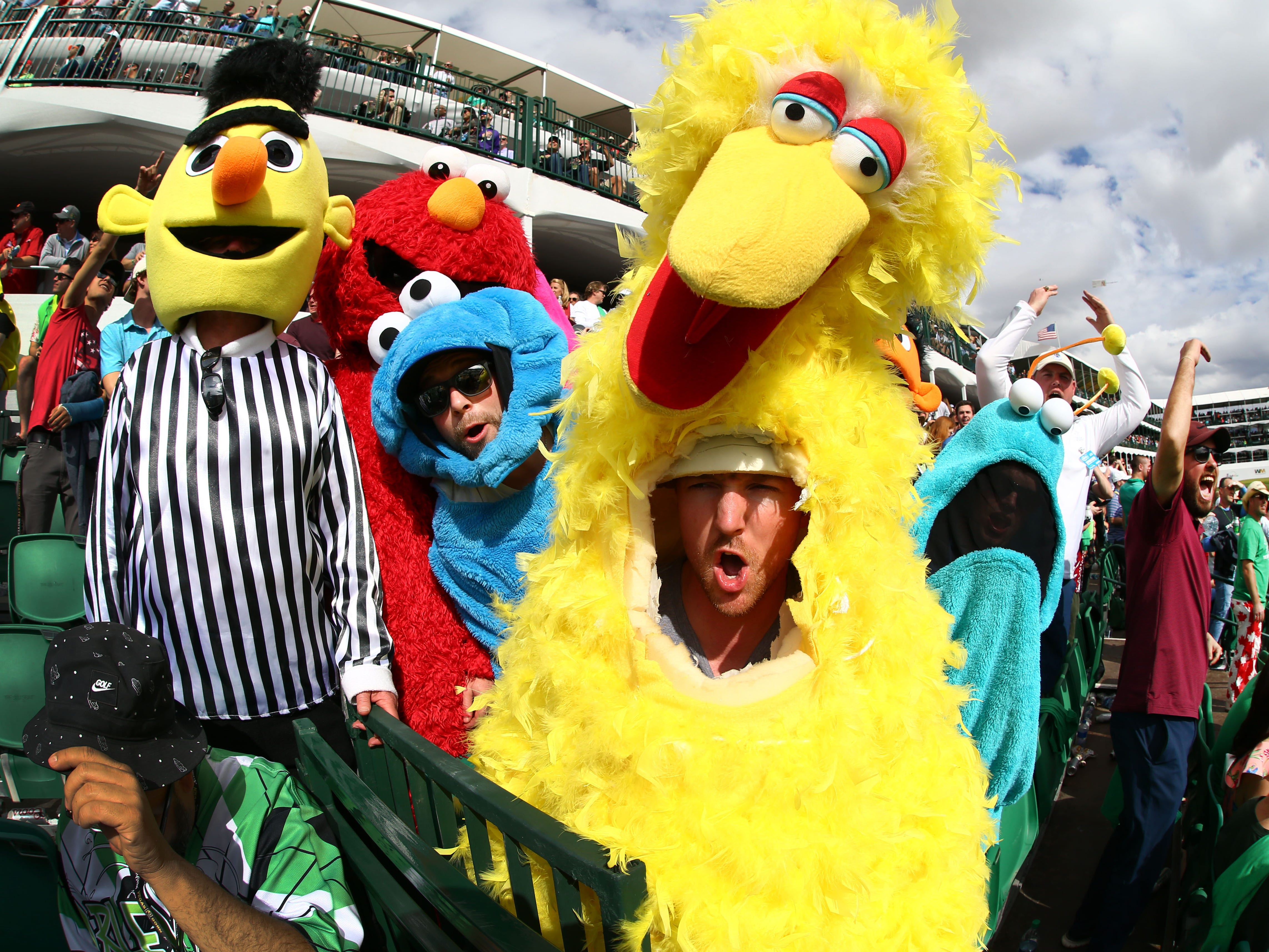 Jesse Hale from Canada wearing Big Bird on the 16th hole with his friends dressed in Sesame Street muppets costomes during third round action on Feb. 2 during the Waste Management Phoenix Open at the TPC Scottsdale Stadium Course.