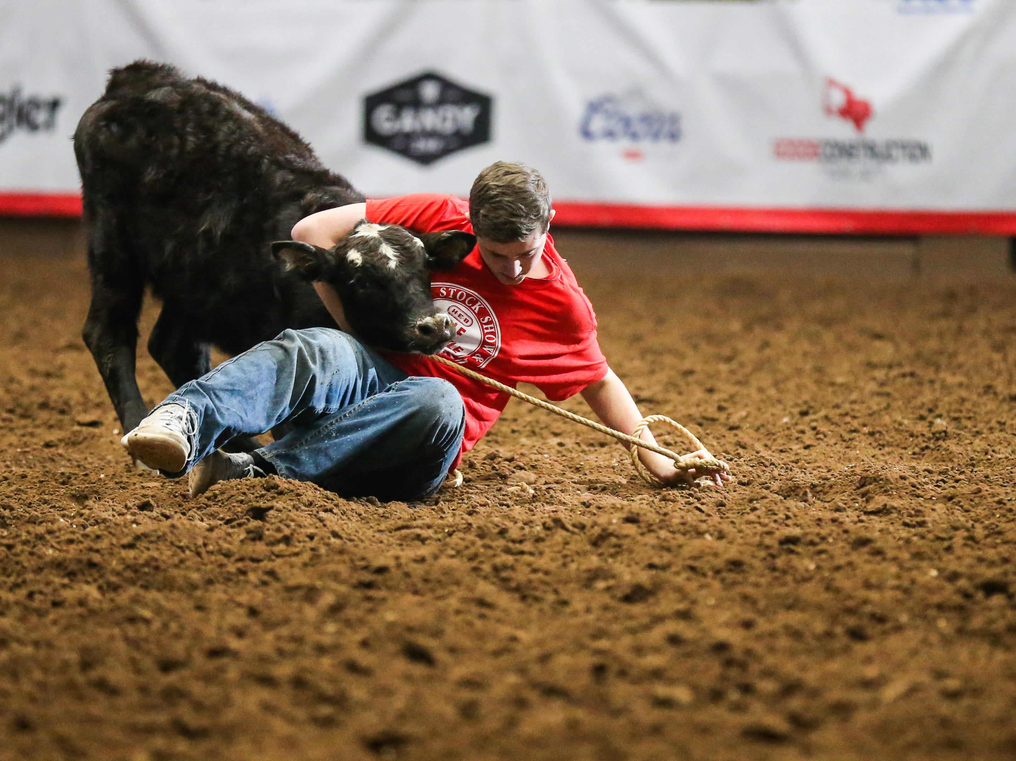 A kid struggles with a calf in the calf scramble during the 4th performance of the San Angelo Stock Show & Rodeo Sunday, Feb. 3, 2019, at Foster Communications Coliseum.