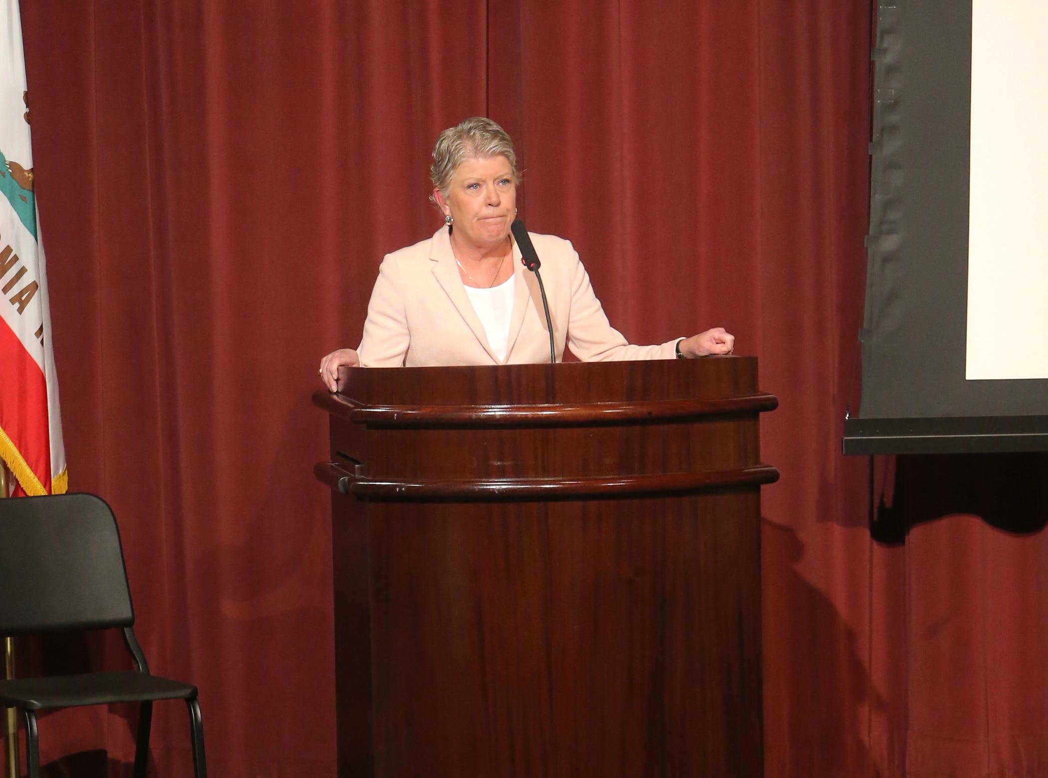 Congresswoman Julia Brownley, D-Westlake Village, speaks during a forum on gun violence held Sunday at Westlake High School. Around 200 people attended the event.