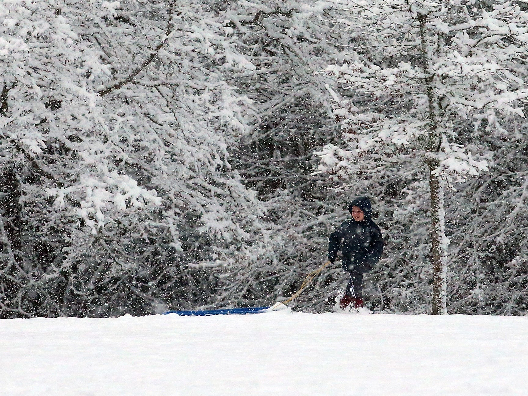 Marcus Stephan, 6, pulls his sled through the snow at Raab Park in Poulsbo on Sunday, February 3, 2019.