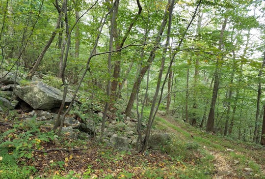 Ninety-eight acres off Ludlow Station Road in Bethlehem Township will remain unspoiled for generations to come thanks to Hunterdon Land Trust.