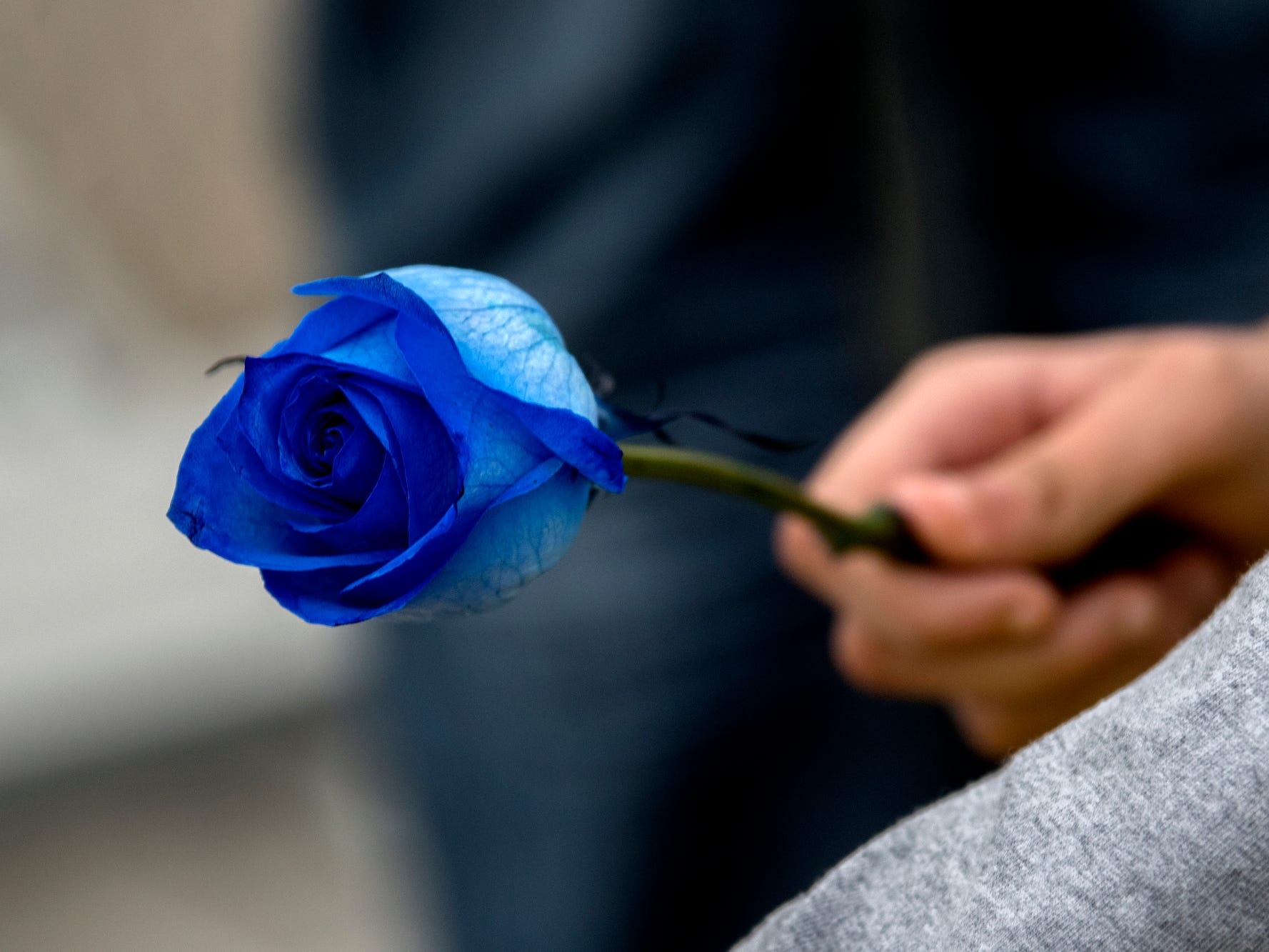 A student holds a blue rose during a short ceremony on the football field where classmates released balloons in honor of their fellow classmate 8th-grader Michael Martin at Everett New Tech High School on Monday, Feb. 4, 2019, in Lansing. Michael, 13, died Jan. 25, at Sparrow Hospital, two days after attempting suicide in his home. Joanna Wohlfert, Michaels mother, said her son had endured months of bullying.