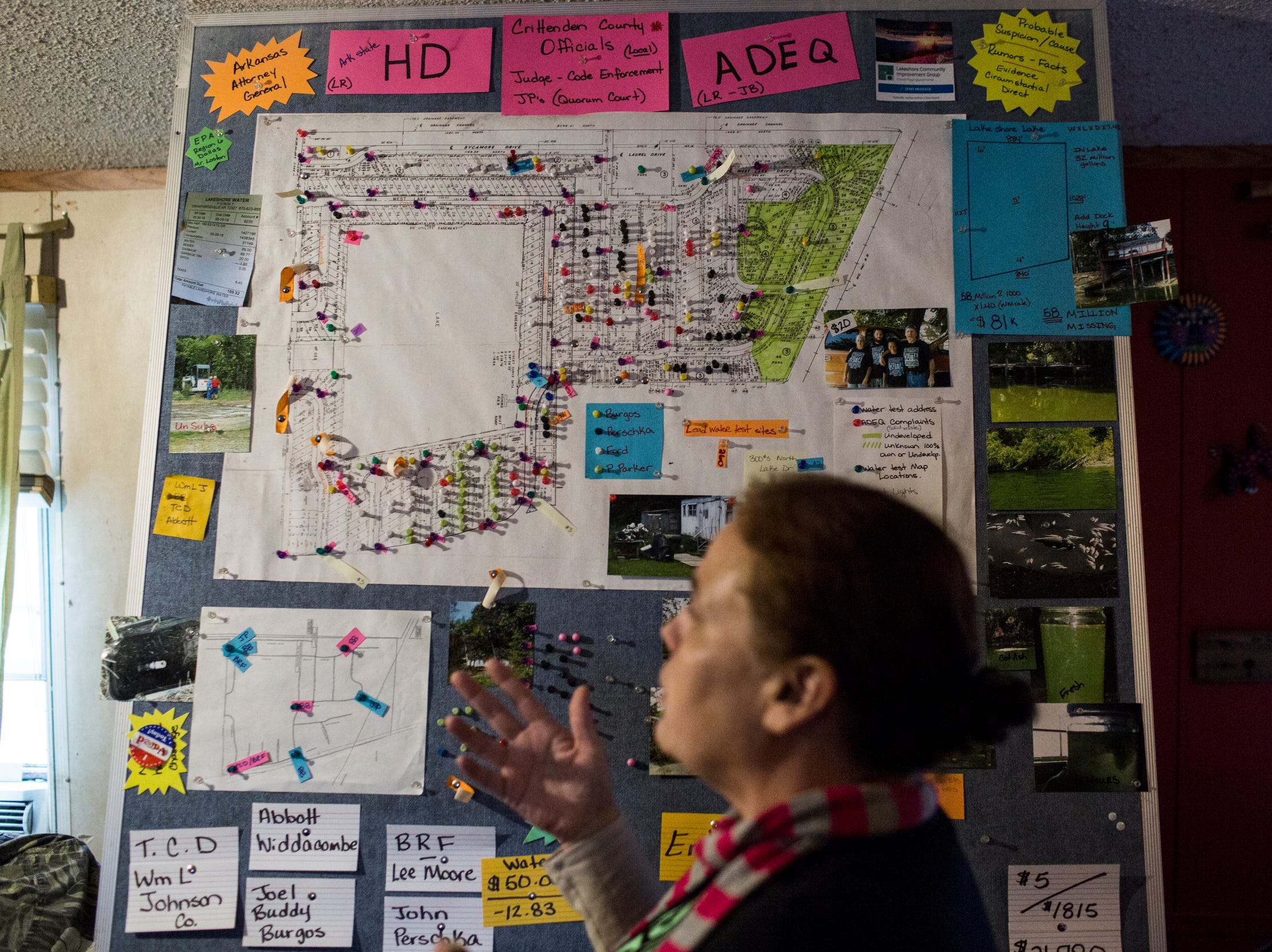 January 23, 2019 - Cassandra Meyer, co-chair of the Lakeshore Community Improvement Group, talks about information on a board that she and members of the group have gathered about their neighborhood.