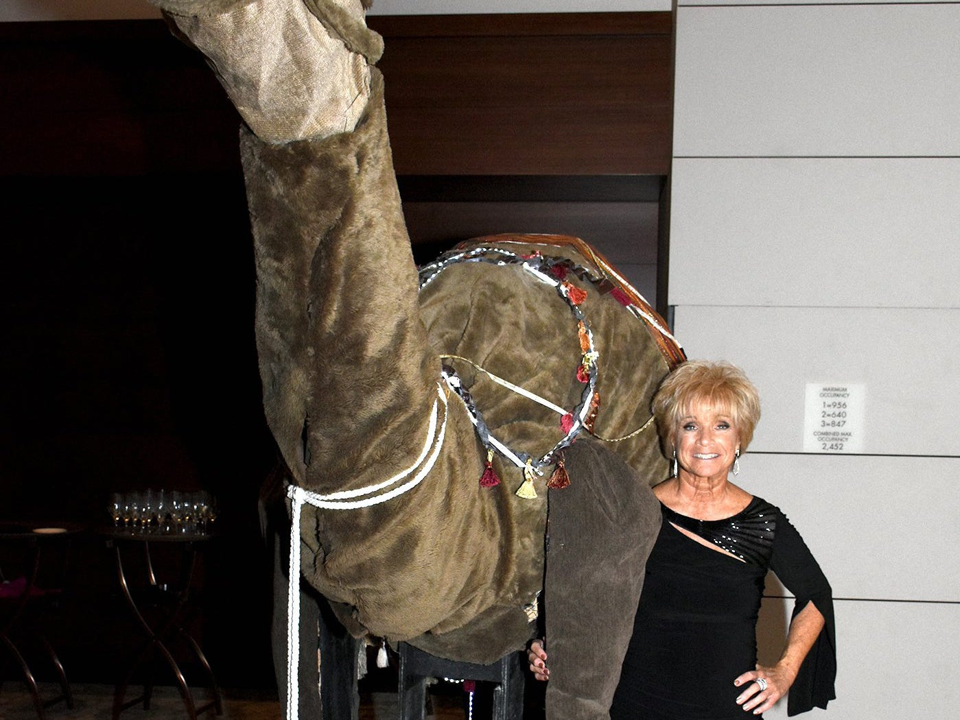 Debra Shanahan poses with a large stuffed camel. The Marco Island unit of the American Cancer Society held the Imagination Ball Friday evening at the JW Marriott hotel, raising funds to continue the fight against cancer.