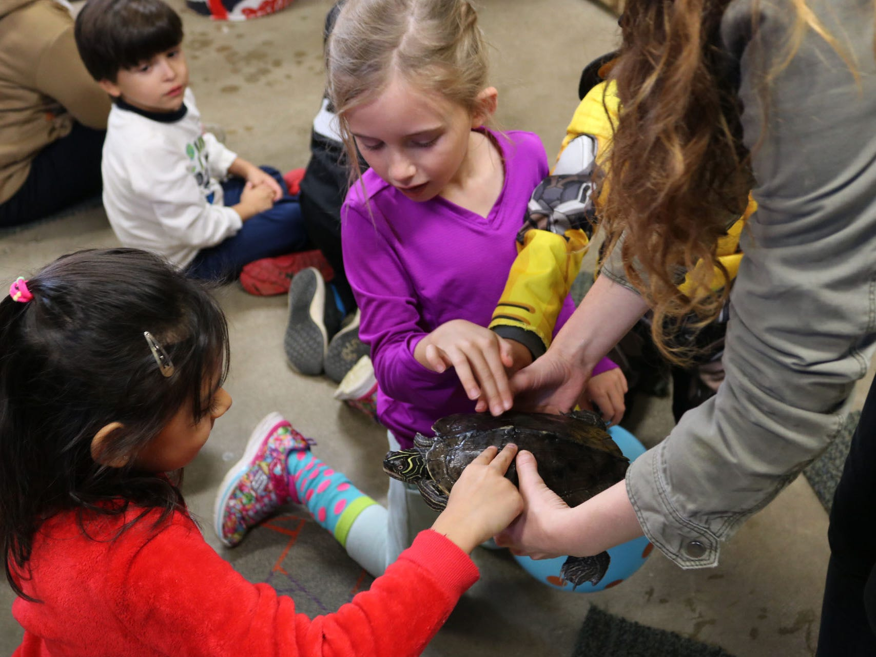 Urban Ecology Center birthday parties include the option to meet animals.