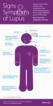 An illustration provided by the Lupus Foundation of America reviews some common signs and symptoms of Lupus.