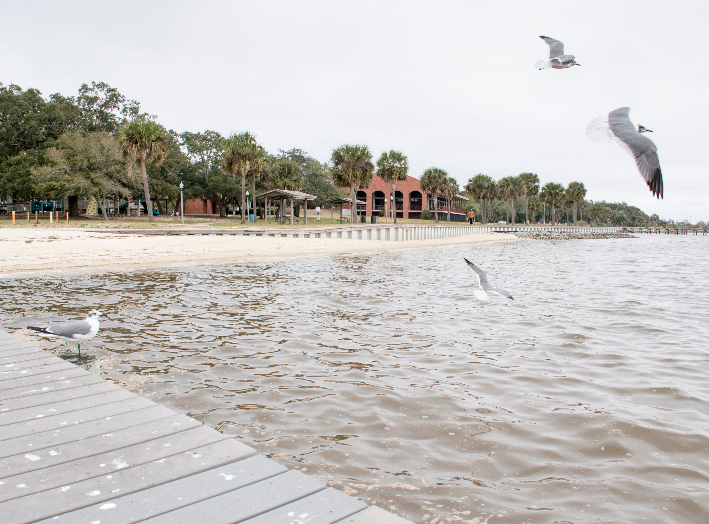 Sanders Beach in Pensacola on Monday, February 4, 2019.  Pensacola Mayor Grover Robinson plans to ask the Pensacola City Council for $60,000 to have the landscape architecture firm SCAPE study ways to improvement access, connectivity and resiliency along the waterfront between Joe Patti's Seafood to Bayou Chico. If approved, the funding would extend the boundaries of an existing SCAPE funded by Pensacola entrepreneur and philanthropist Quint Studer.