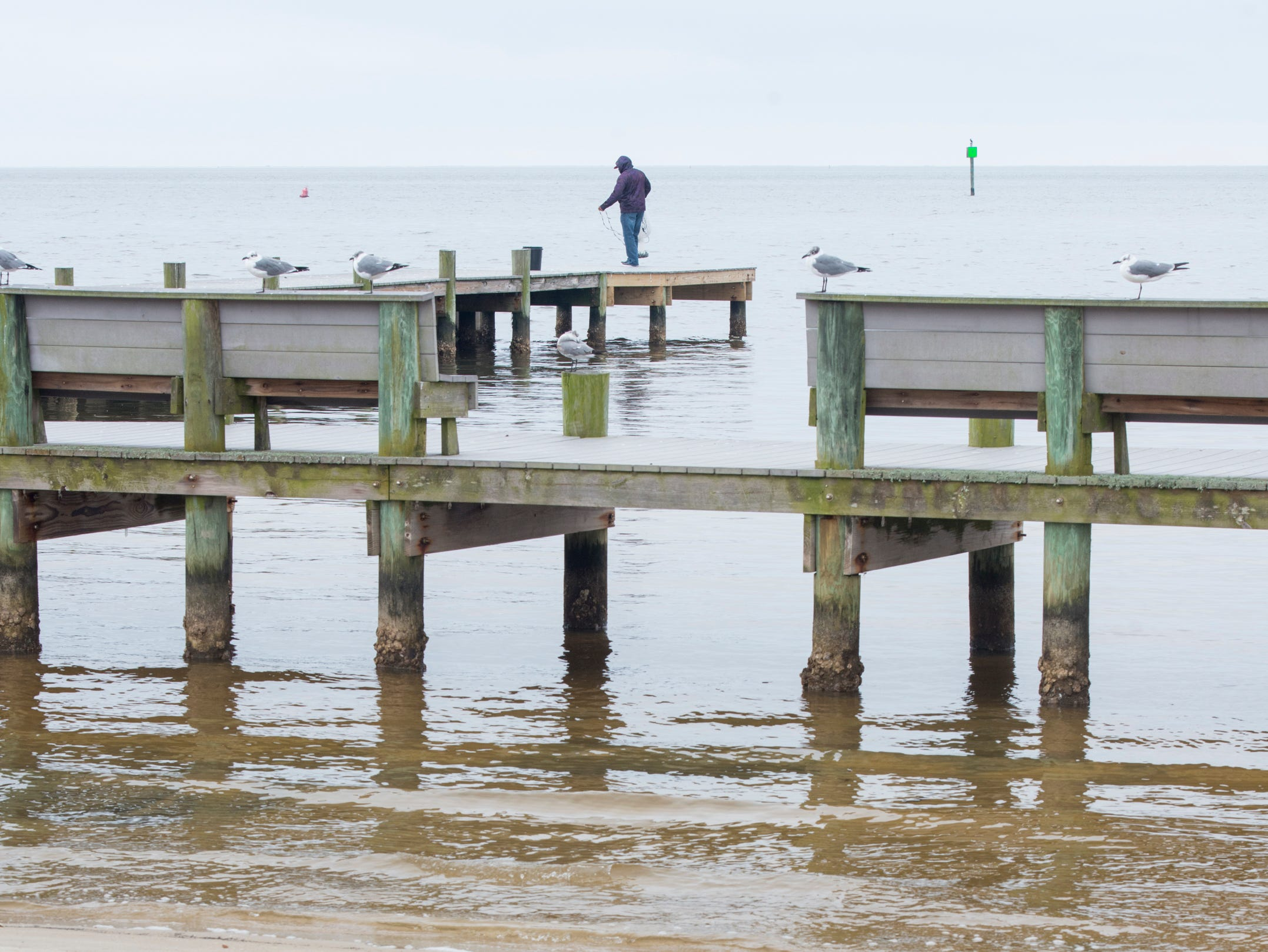 An angler fishes off the pier at Sanders Beach in Pensacola on Monday, February 4, 2019.  Pensacola Mayor Grover Robinson plans to ask the Pensacola City Council for $60,000 to have the landscape architecture firm SCAPE study ways to improvement access, connectivity and resiliency along the waterfront between Joe Patti's Seafood to Bayou Chico. If approved, the funding would extend the boundaries of an existing SCAPE funded by Pensacola entrepreneur and philanthropist Quint Studer.