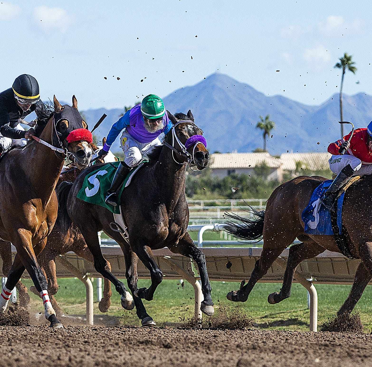 Turf Paradise is required to have an ambulance on hand. After a jockey was crushed by his horse he waited 30 minutes