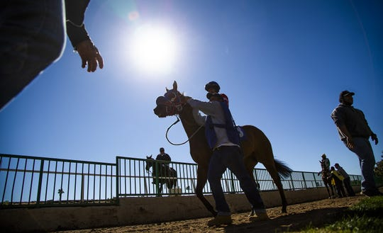 Jockeys and their horses make their way to the track for the first race at Turf Paradise in Phoenix on Jan. 22, 2019.