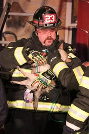 A firefighter resuscitates a dog following a fire in the 400 block of East Mount Airy Road, Monaghan Township, on Monday, Feb. 4. Photo courtesy of Dustin Weese.