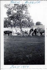 "While the Manzke family enjoyed fishing and swimming in their private ""lake"" they didn't enjoy sharing it with their herd of cows that grazed on the nearby pasture."