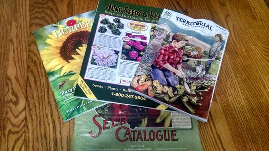 Seed catalogs activate summer dreams during the winter.