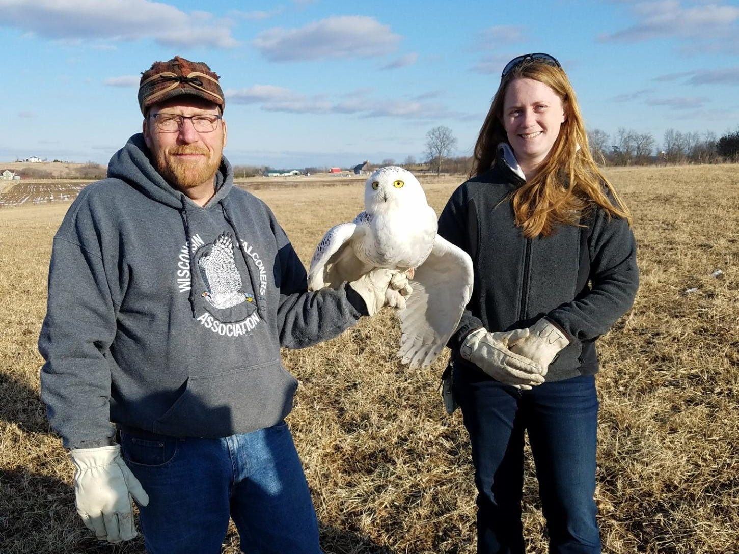 Frank Ujazdowski and Erin Giese, cofounders of Project SOAR, pose with a snowy owl captured March 2018 at Wittman Regional Airport in Oshkosh. Project SOAR aims to rescue snowy owls, as well as other raptors, from airport grounds. The birds, which often breed and hunt on flat, treeless lands, present a threat to airport safety.