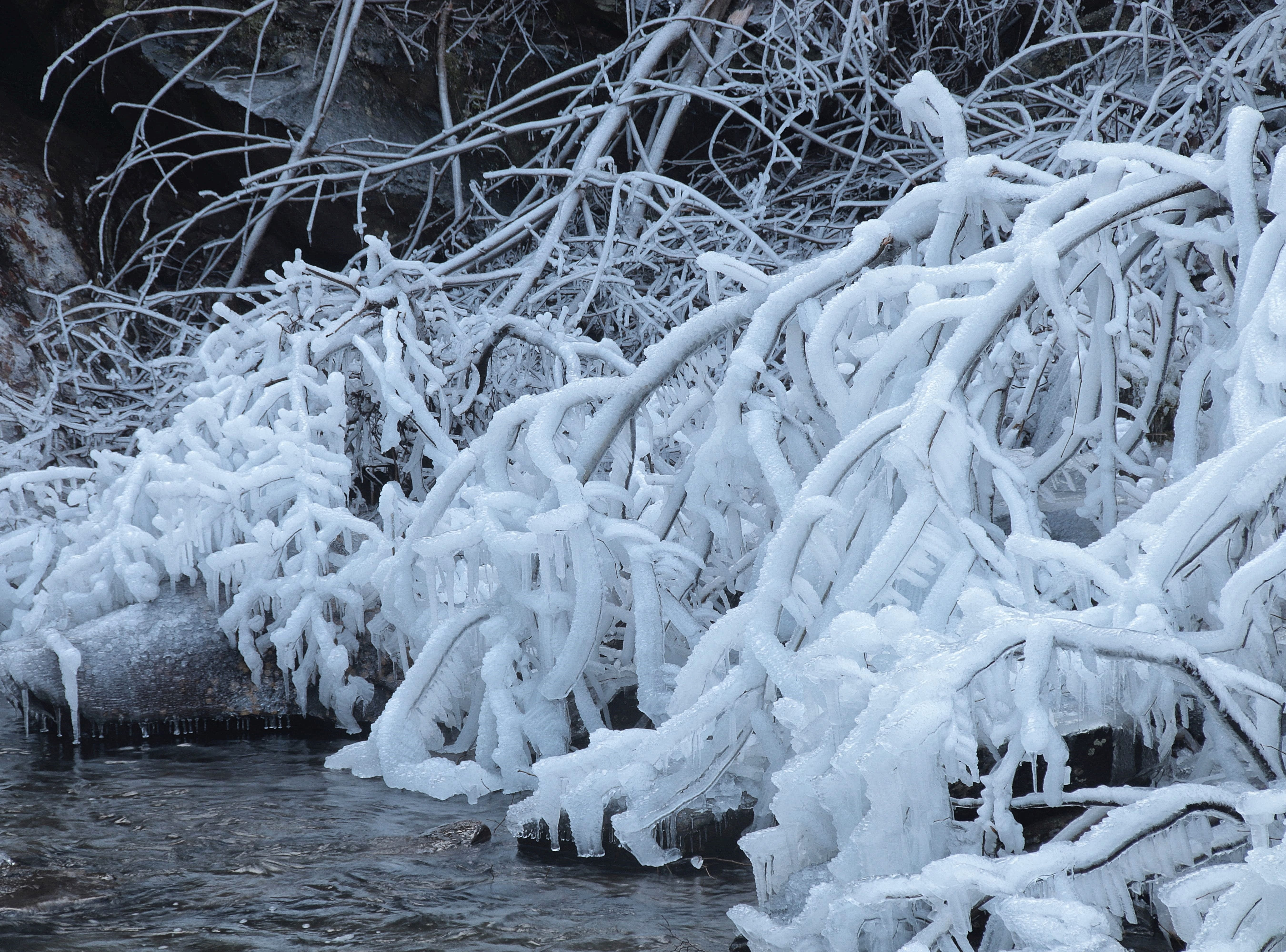 Patricia Serio photographed the iced over trees on the base of Bald River Falls in the Cherokee National Forest on Thursday, Jan. 31, 2019.