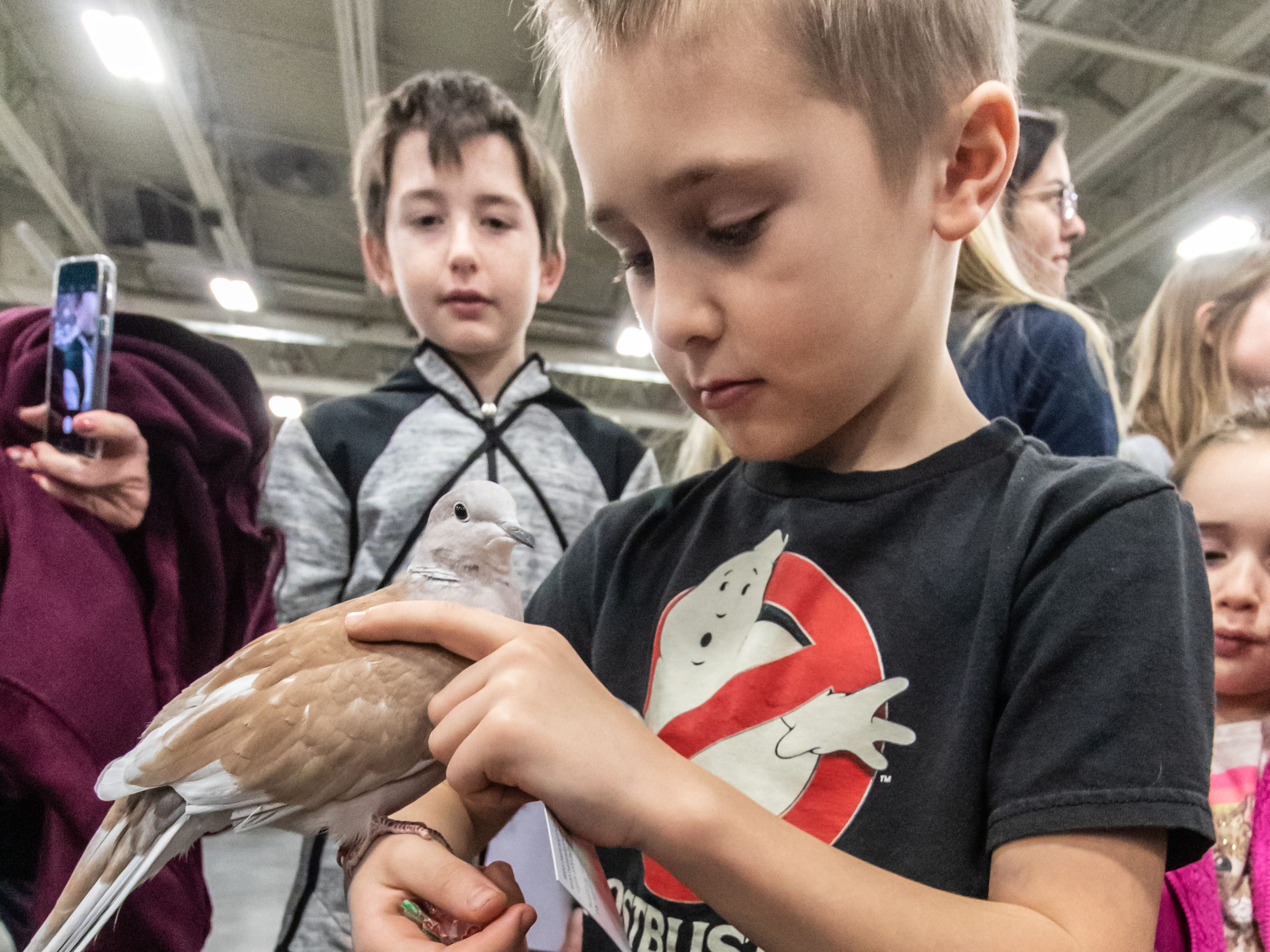 Bennett Hensley, 7, of Hartford, holds a dove from Waukesha's Center for Animal Rehab during the Great Lakes Pet Expo at State Fair Park on Saturday, Feb. 2, 2019. The non-profit event, celebrating its 15th anniversary, benefits Wisconsin animal rescues and shelters.