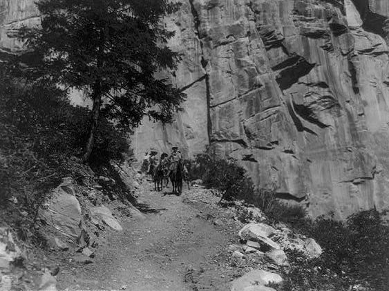 Visitors ride down the Bright Angel trail in the Grand Canyon, ca. 1908.