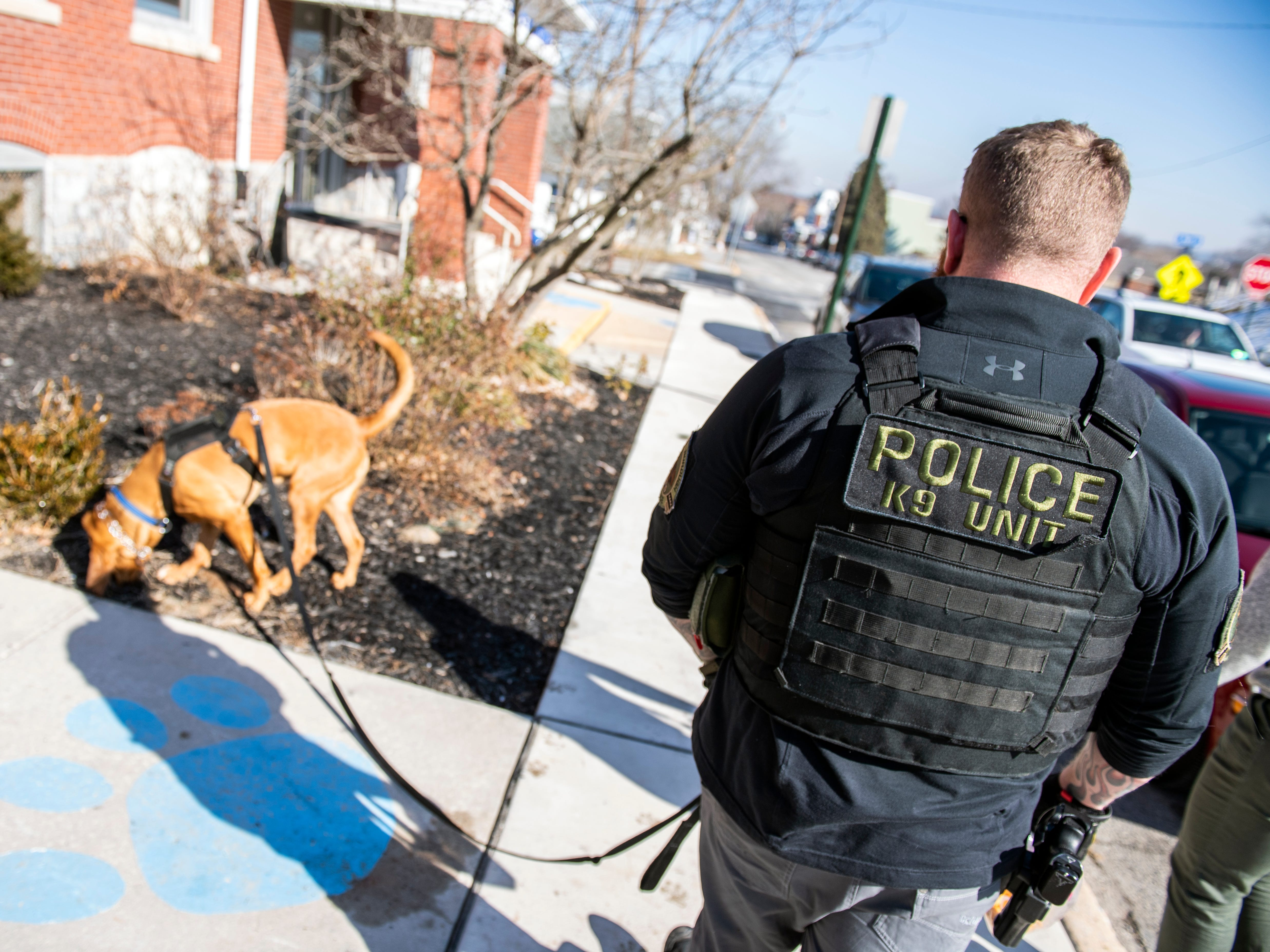Cpl. Scott Musselman, who handles Det. Prince, always wanted to be a K-9 handler and says that he wouldn't want any other dog, after working with Prince for the past year through trainings and criminal investigations.