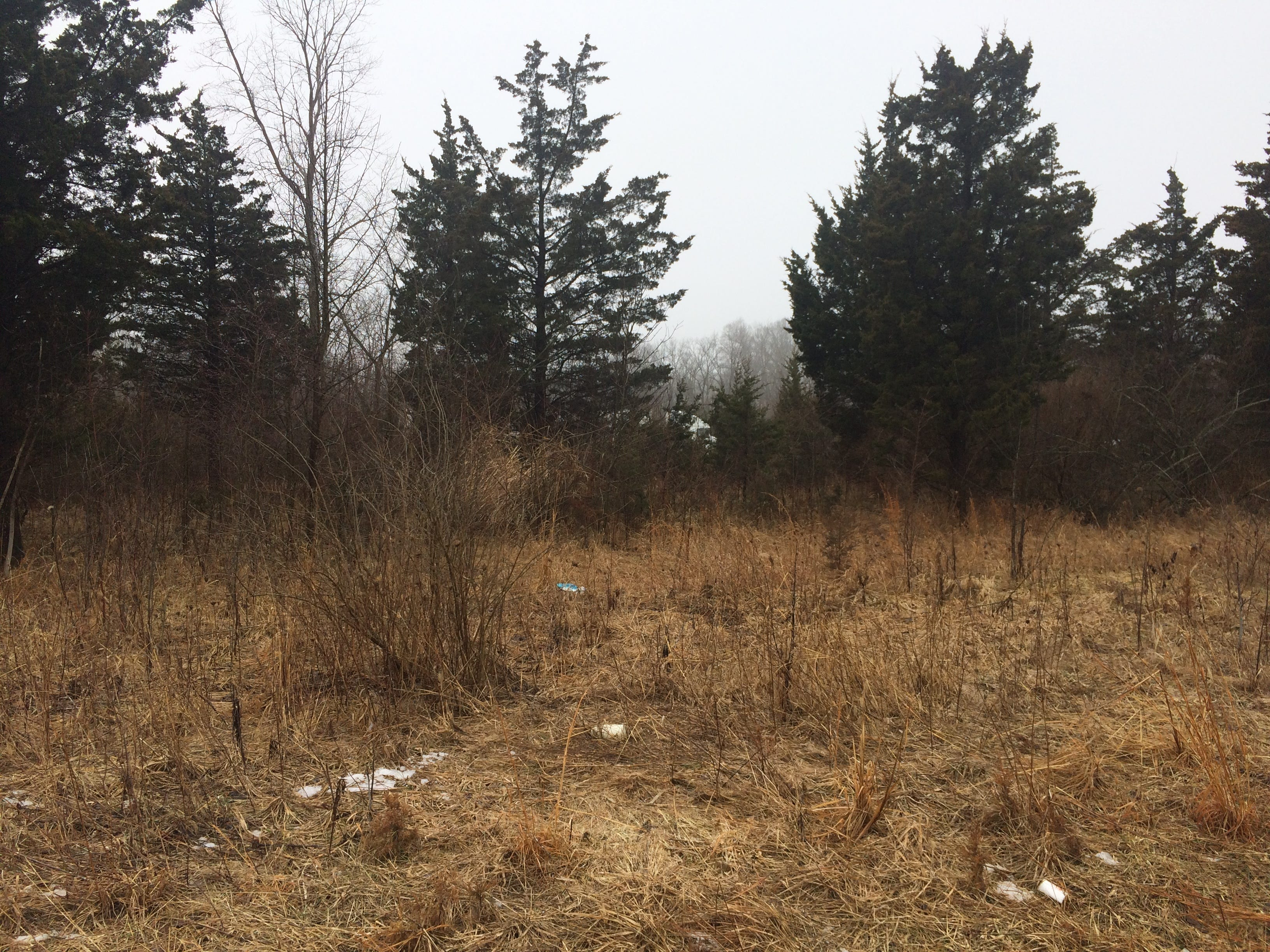 The land at 1817 Highland Road sits just north of Interstate 70 and across the street from Highland Lake Golf Course. Common Council denied a zoning change that would have led to a church being built on the land.