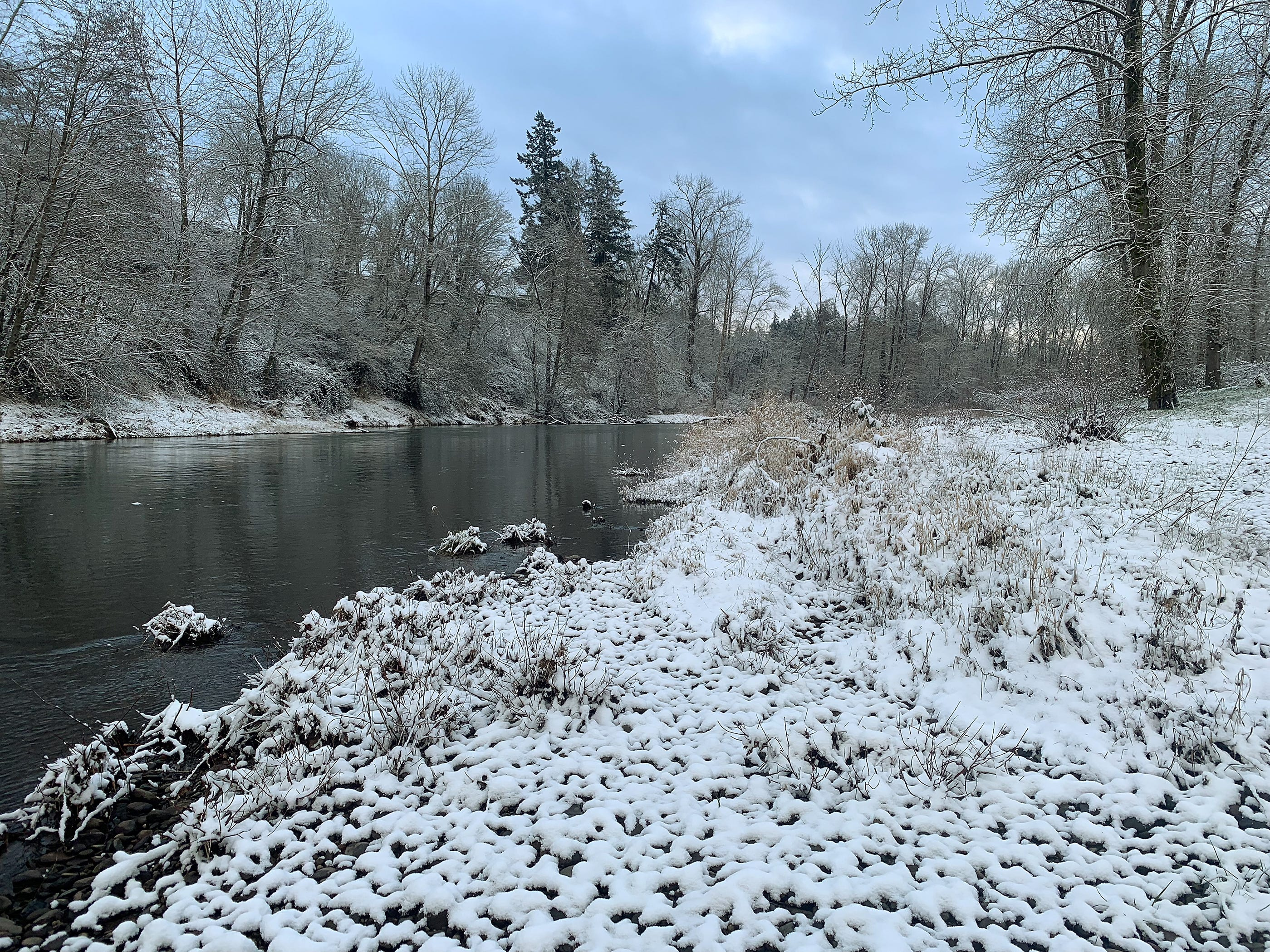 Snow covers much of the mid-Willamette valley and along the Molalla River Tuesday morning. Snow covered cars, trees and yard ornaments greeted residents of Canby, Oregon Tuesday February 5, 2019.