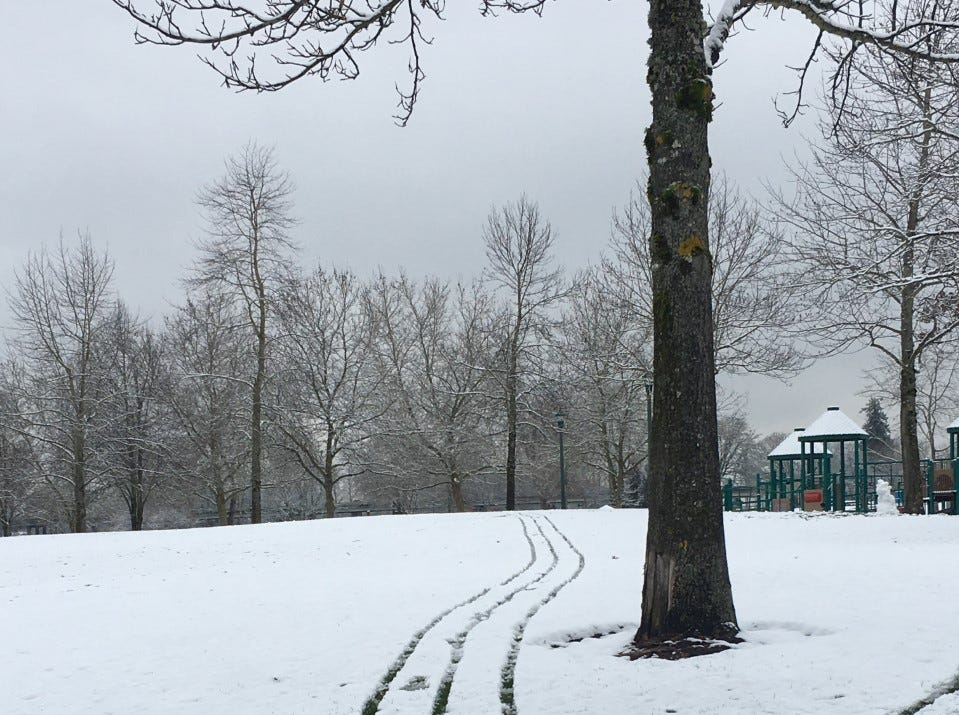 A trail in the snow at Riverfront Park on Tuesday morning.