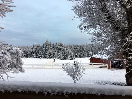 Snow covers the ground in Estacada, Ore., on Monday, Feb. 4, 2019.