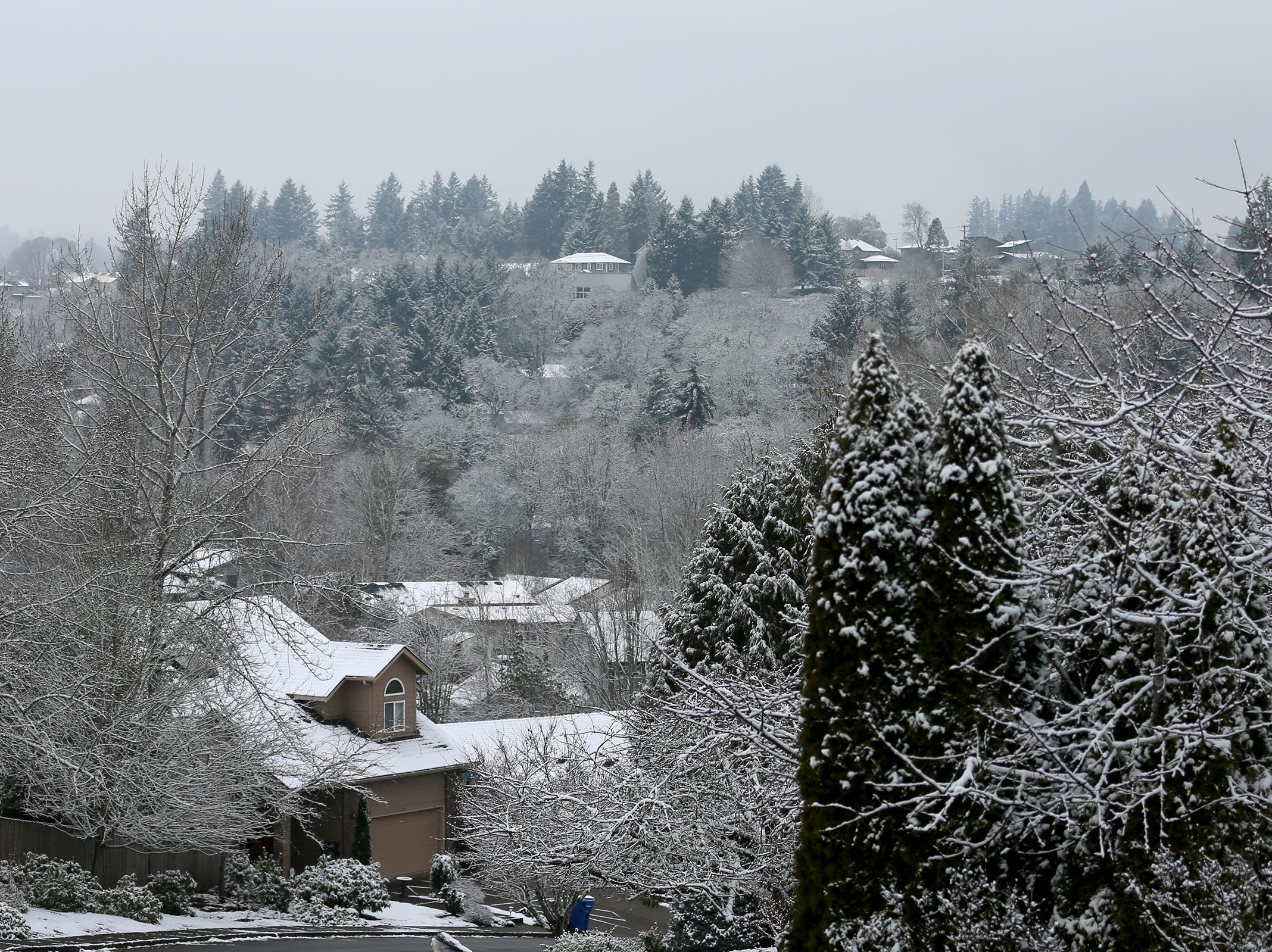 West Salem houses in the snow on Tuesday, Feb. 5, 2019.