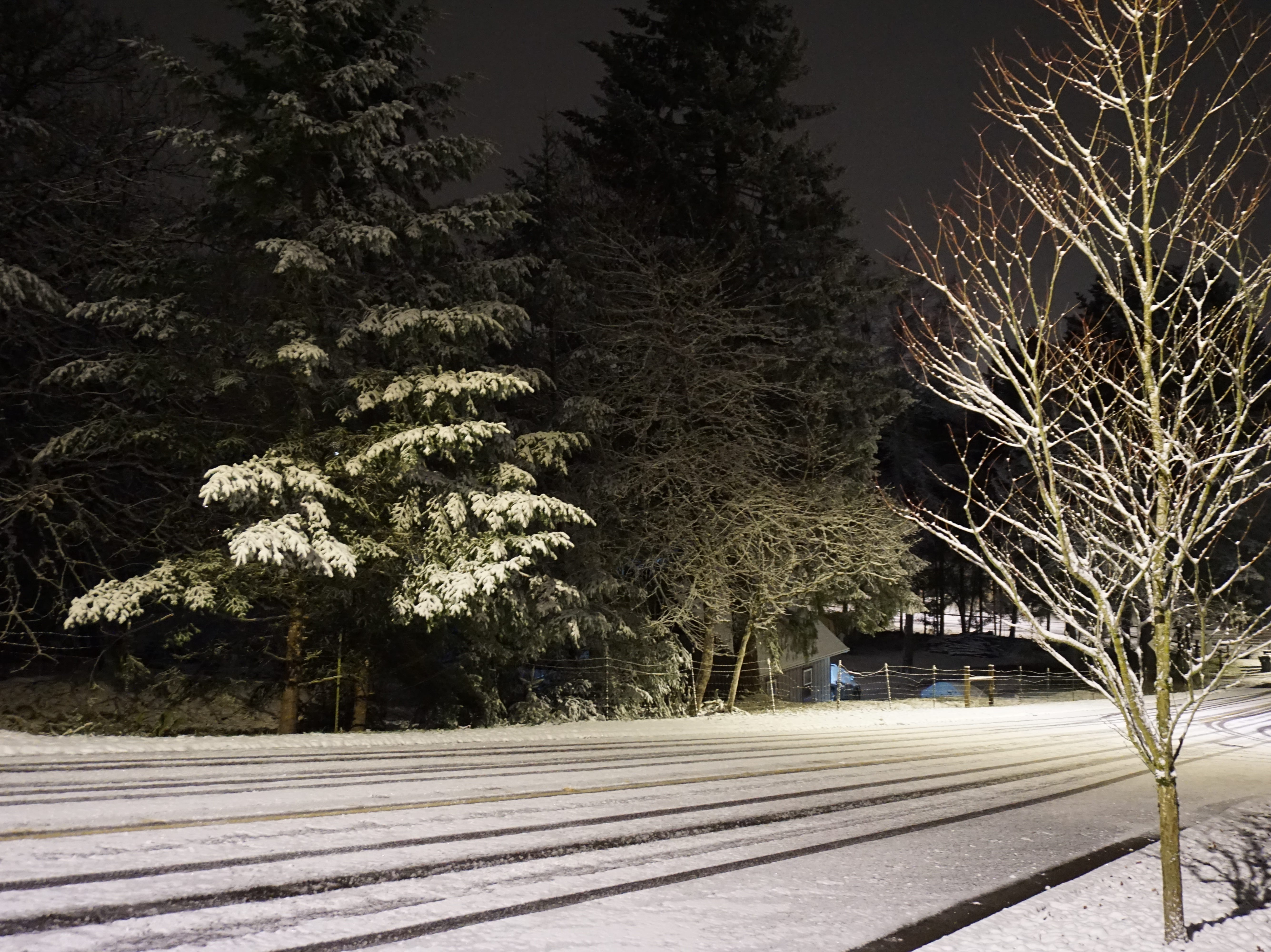 Snow blankets a South Salem Street early Tuesday.