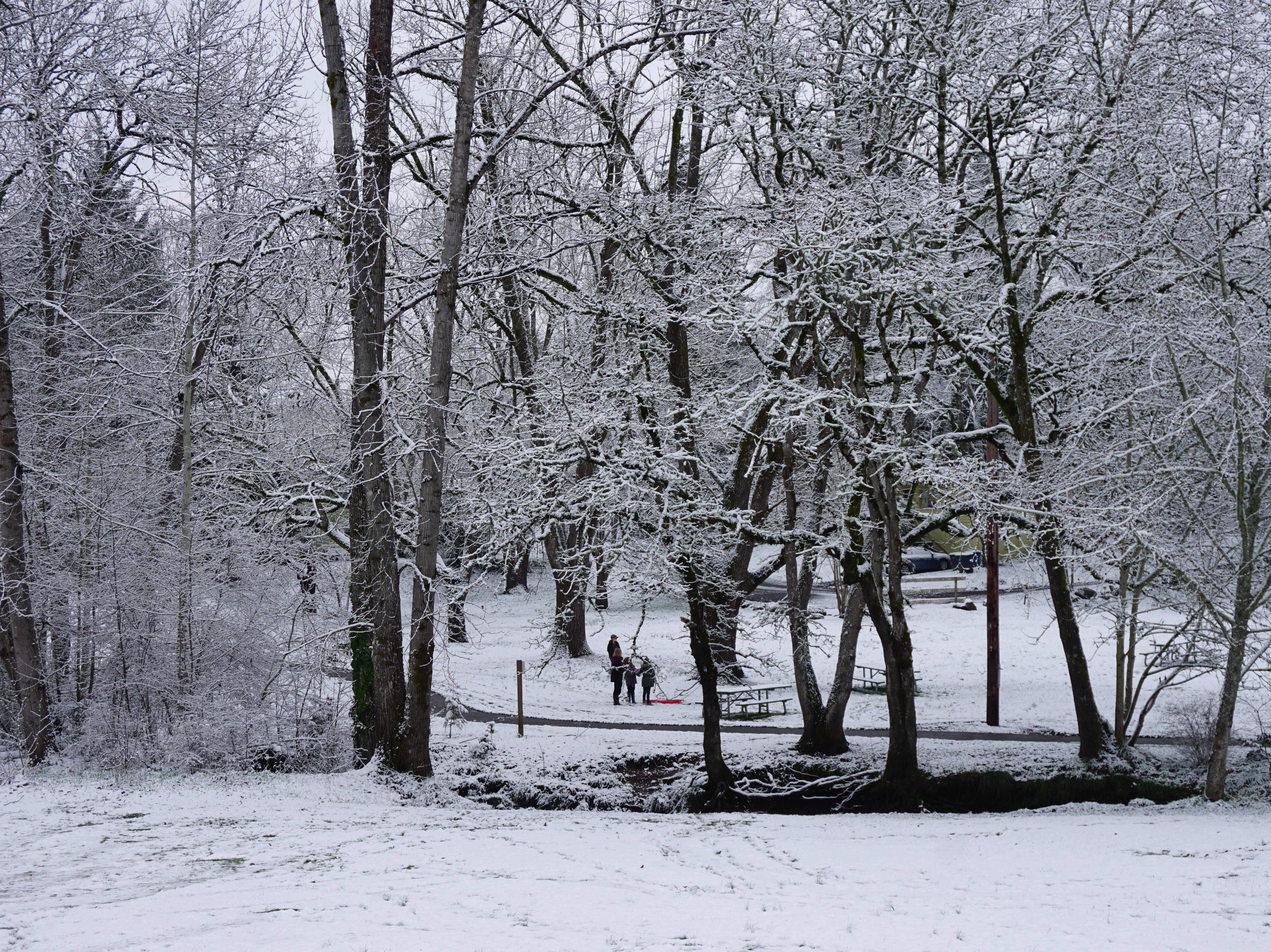Clark Creek Park was a popular destination for sledders and others enjoying the first wide-spread snow of the winter on Tuesday, Feb. 5, 2019, in Salem.