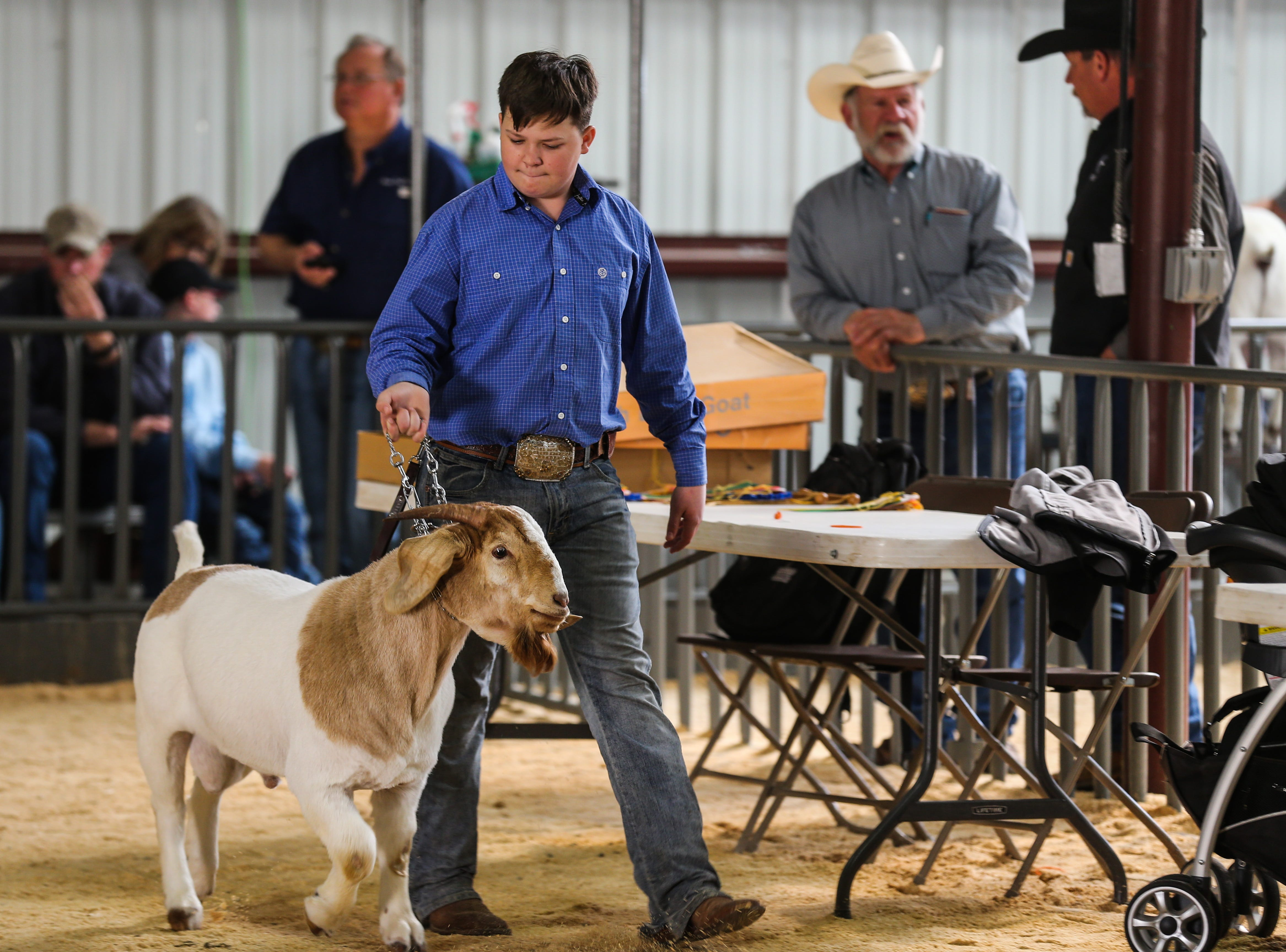 Michael Beets from Odessa walks his boer goat during the open show during San Angelo Stock Show & Rodeo Tuesday, Feb. 5, 2019, at the at the First Financial Pavilion.