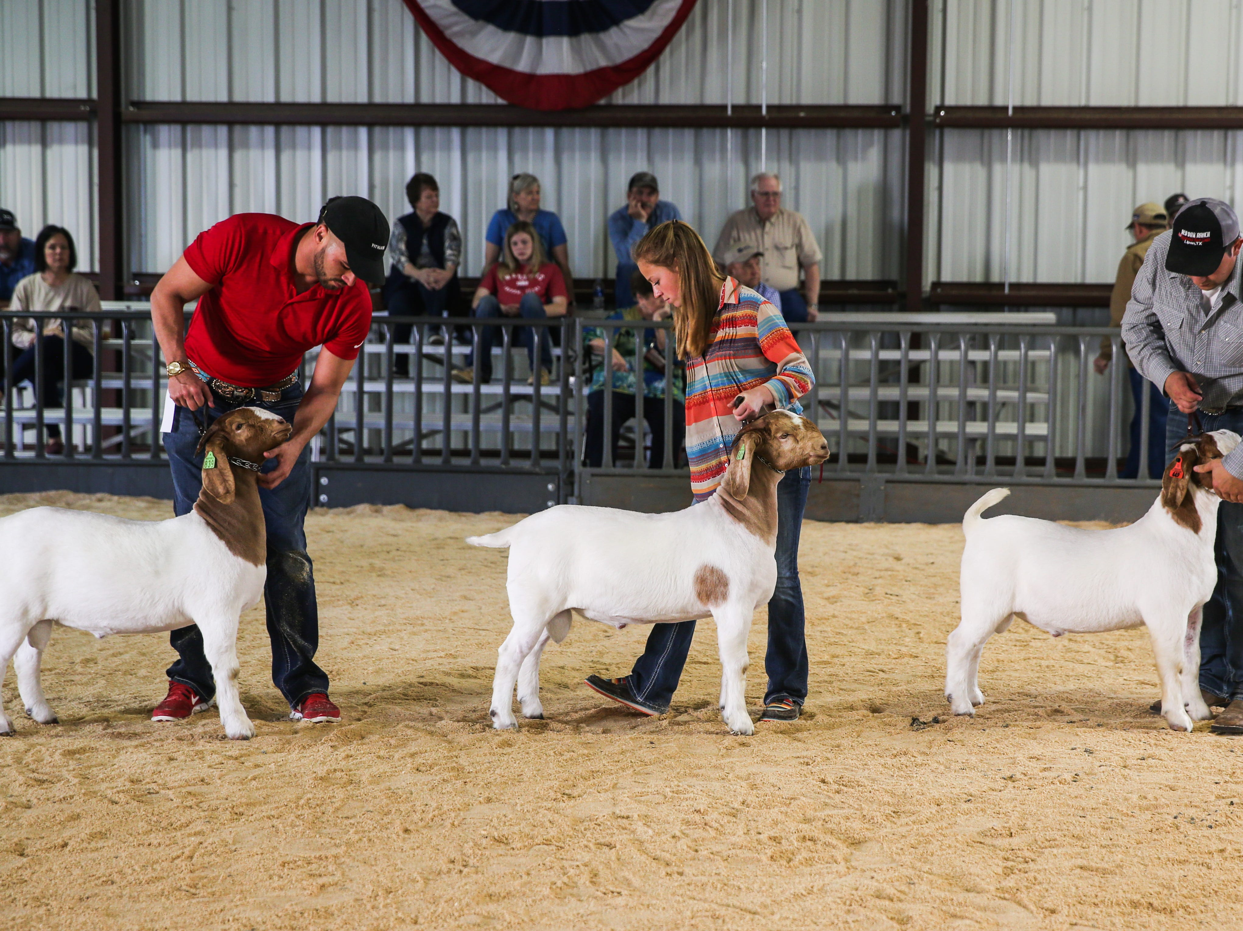 Participants walk with their boer goat during the open show during San Angelo Stock Show & Rodeo Tuesday, Feb. 5, 2019, at the at the First Financial Pavilion.