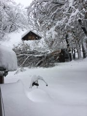 All roads in Yosemite are closed due to heavy snow and fallen trees, park officials announced on Tuesday.