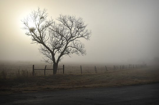 The sun struggles to shine through heavy fog Tuesday morning in a scene in northern Archer County.