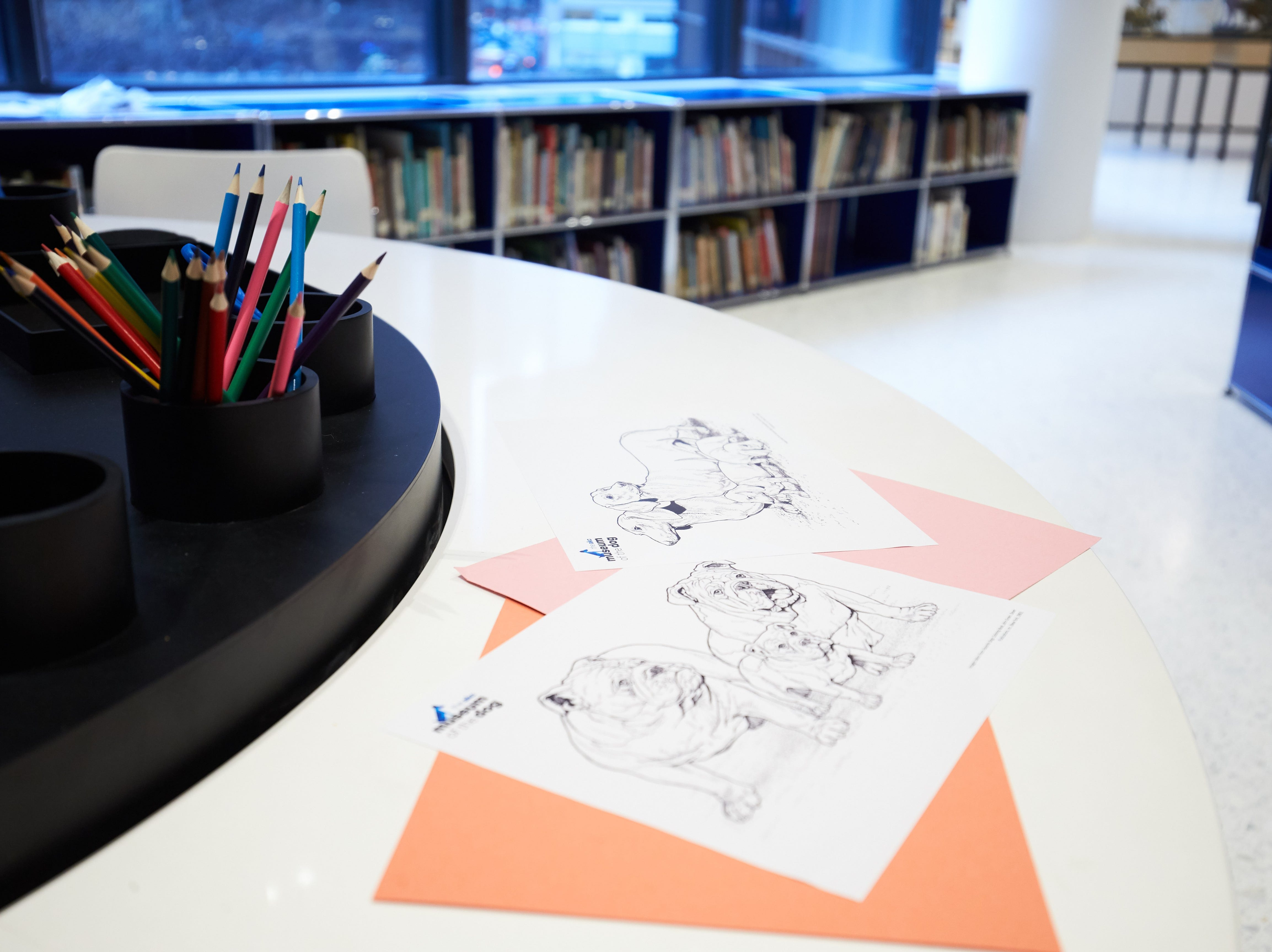 The children's activity table at the Museum of the Dog.