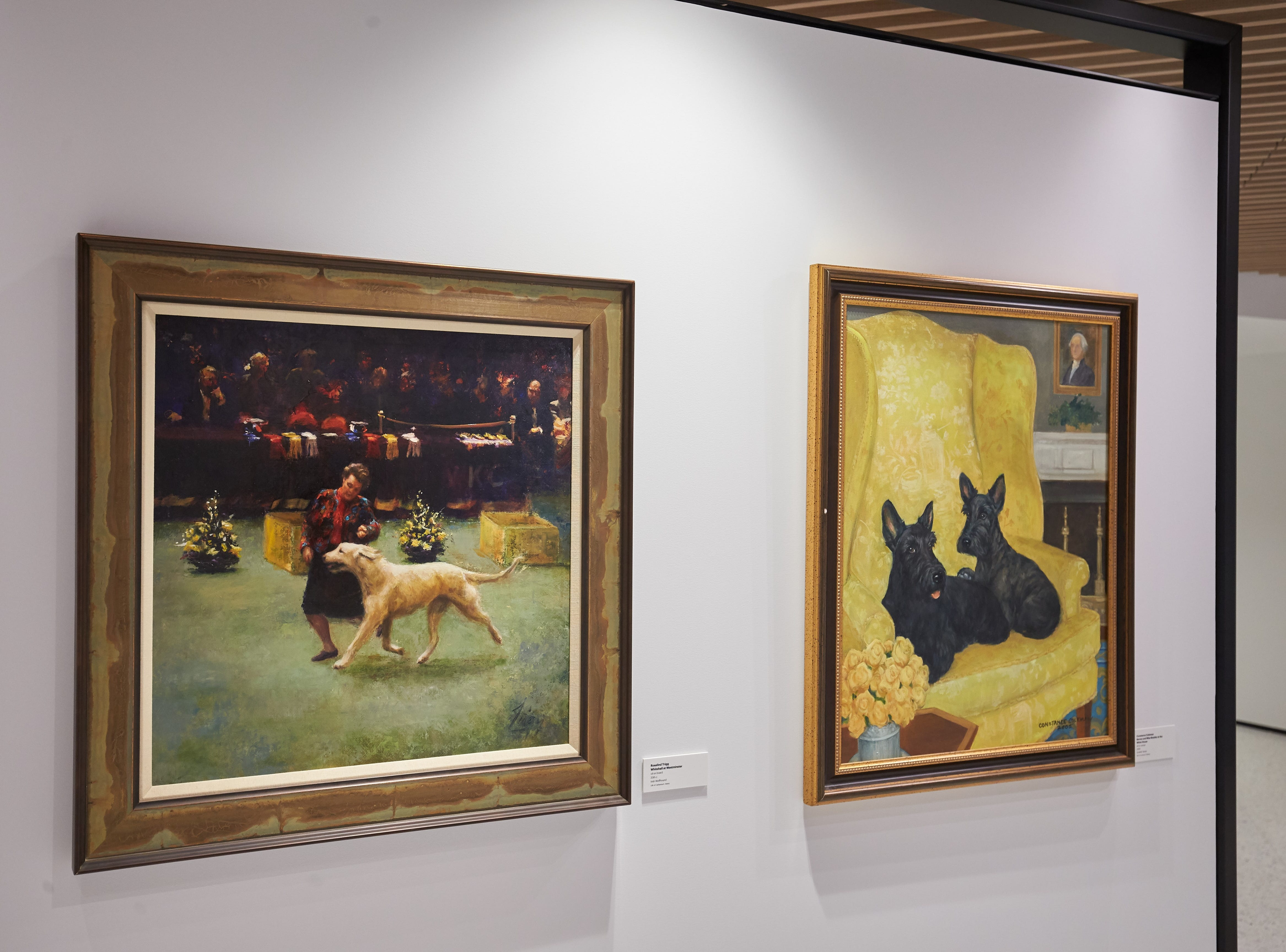 Portraits of purebred dogs hang in the Museum of the Dog in Manhattan.