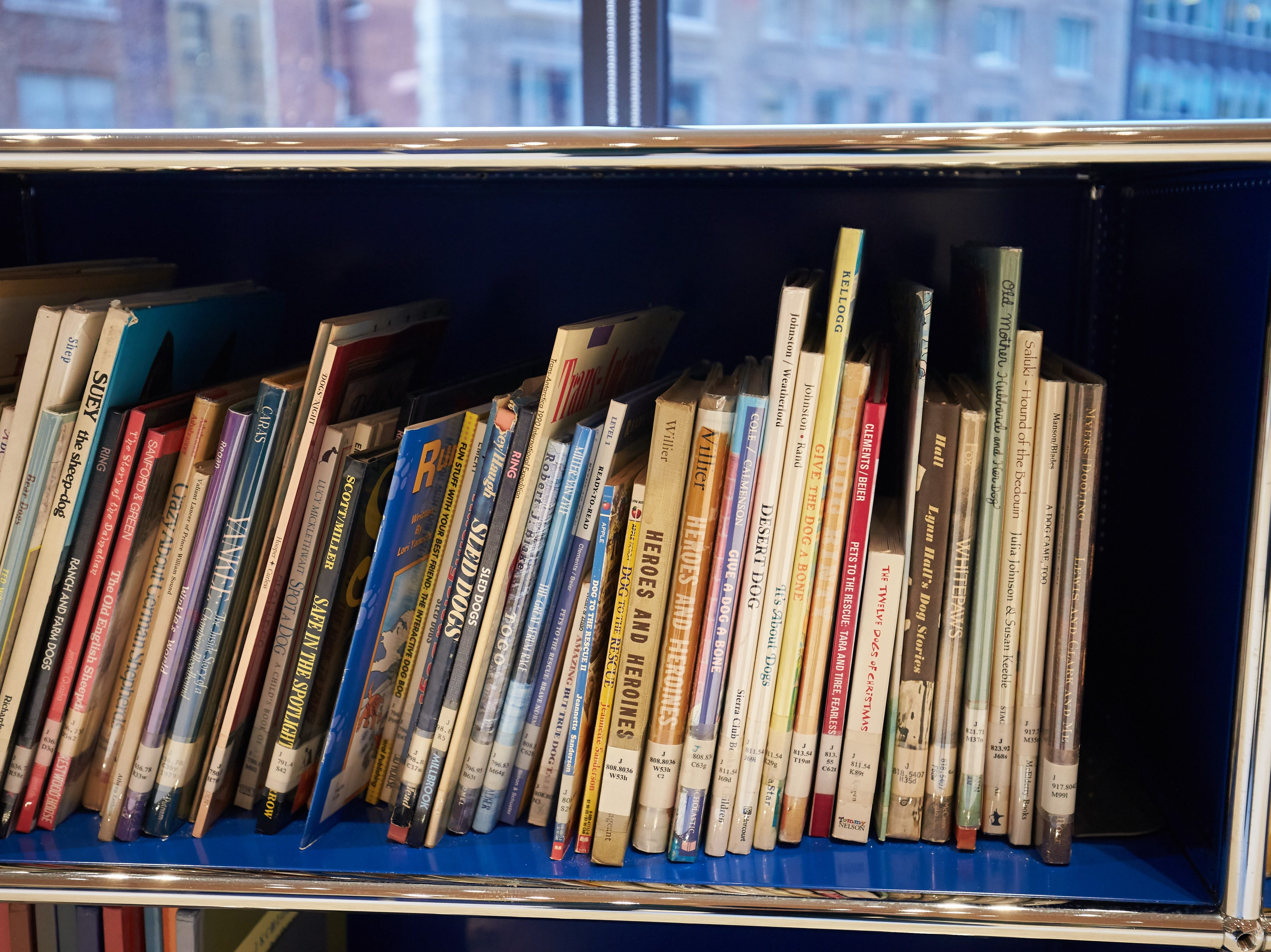 Children's books in the library of the Museum of the Dog.