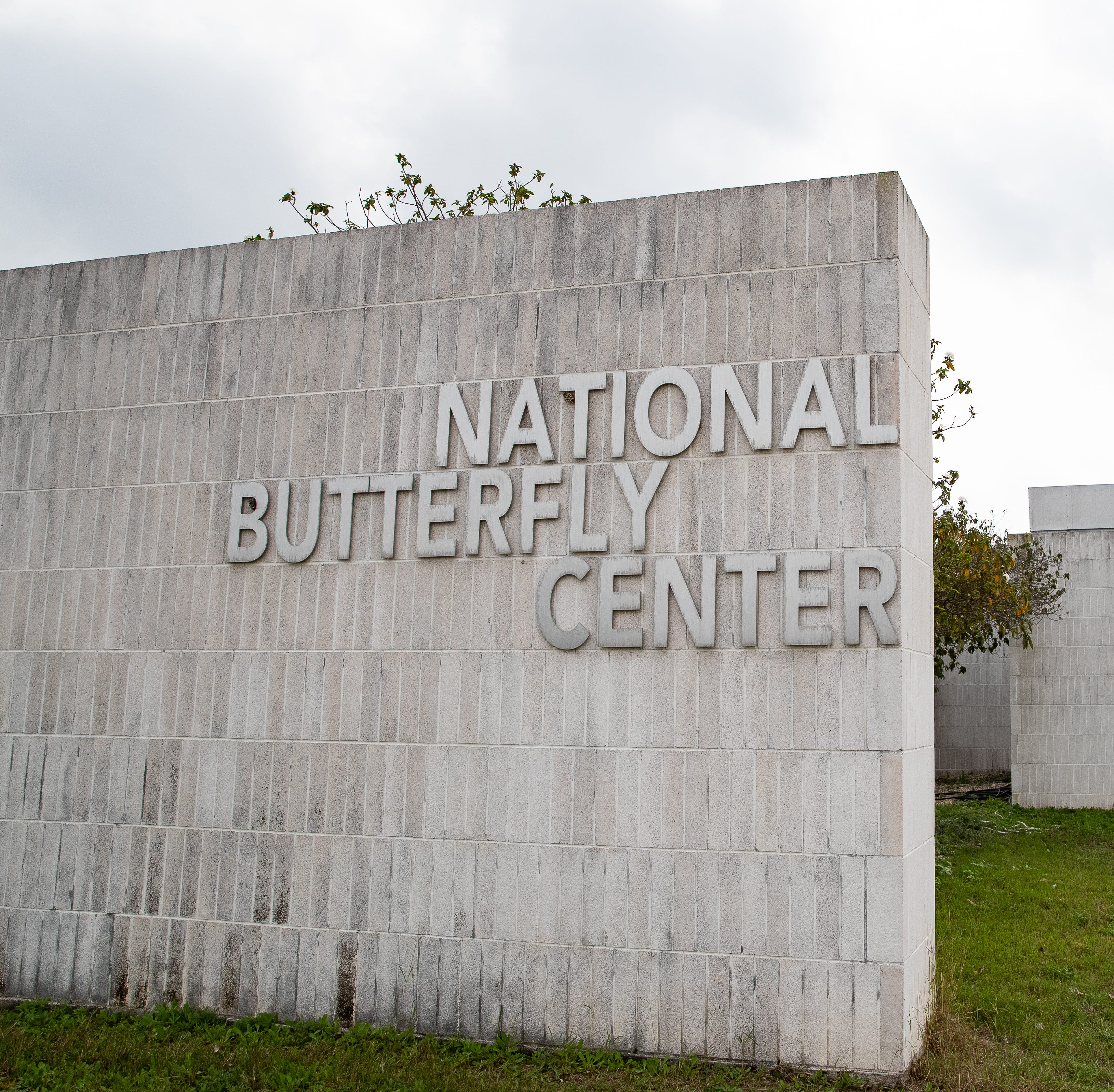 The National Butterfly Center in Mission, Texas on Wednesday, Feb. 6, 2019. The center will have about 70 percent of its property cut off by the proposed border wall along the levee in the area.