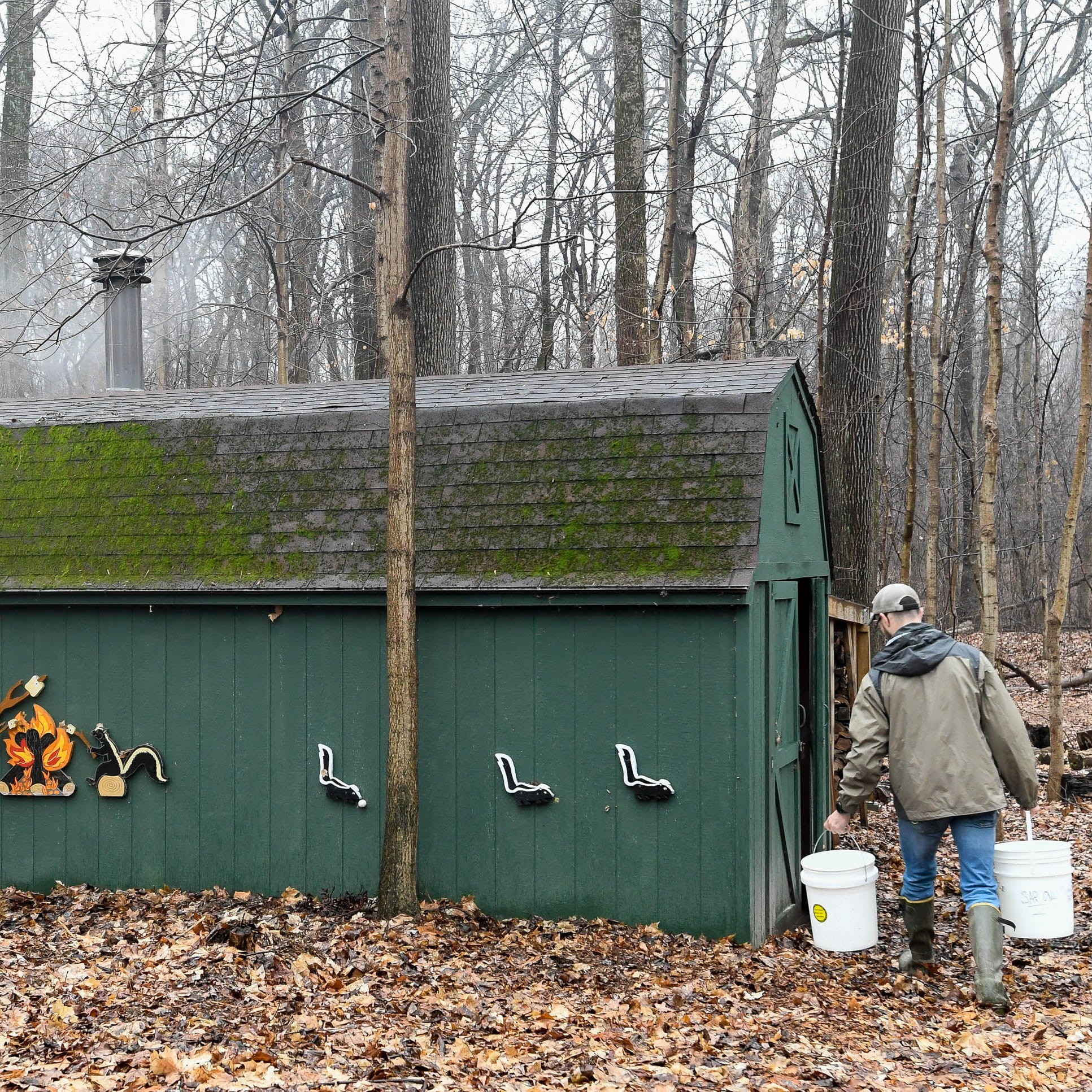 How maple syrup saved a village and the local wildlife during harsh winter