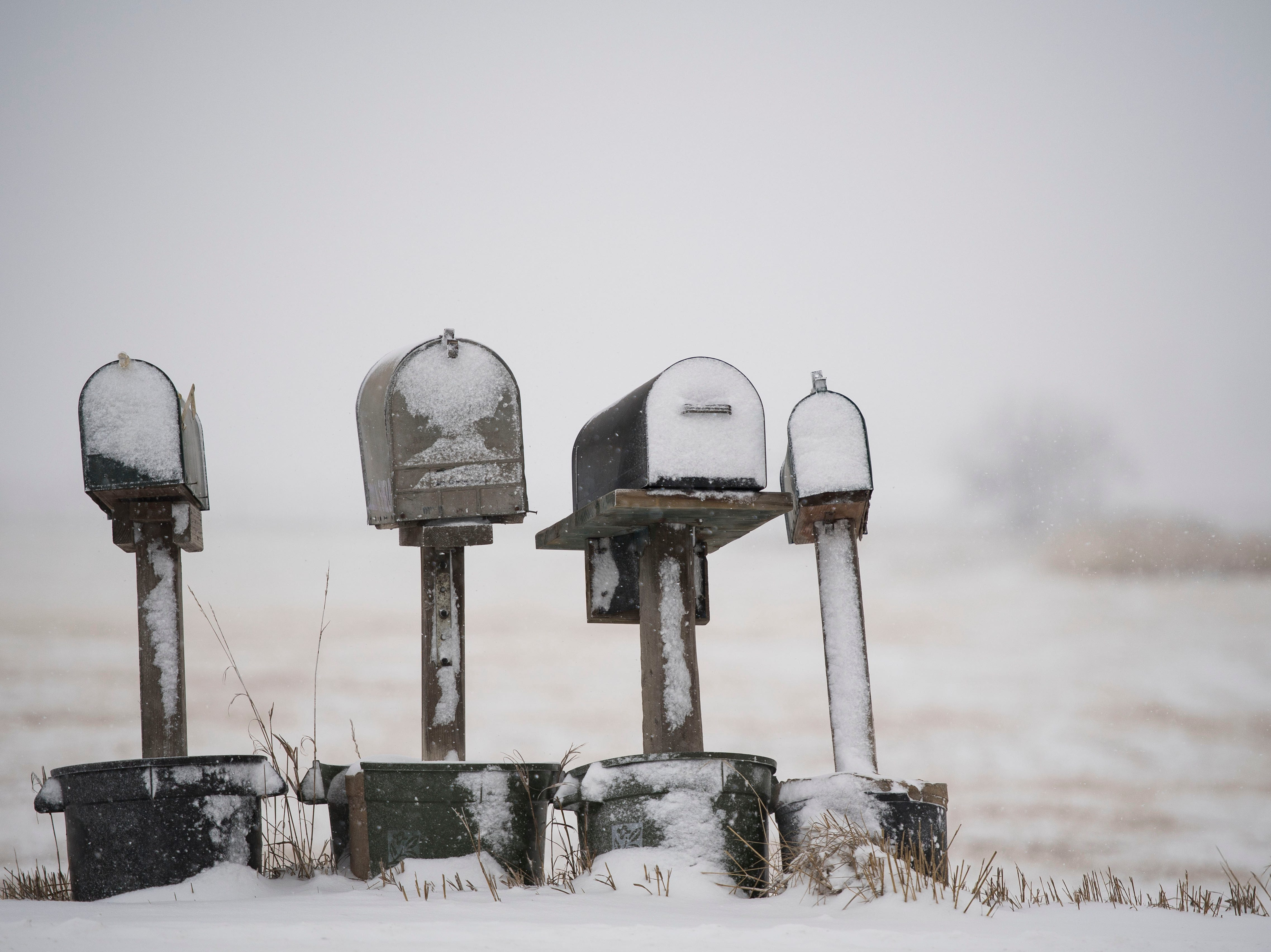 Mailboxes begin to collect snow during a snowstorm on Wednesday, Feb. 6, 2019, in Fort Collins, Colo.