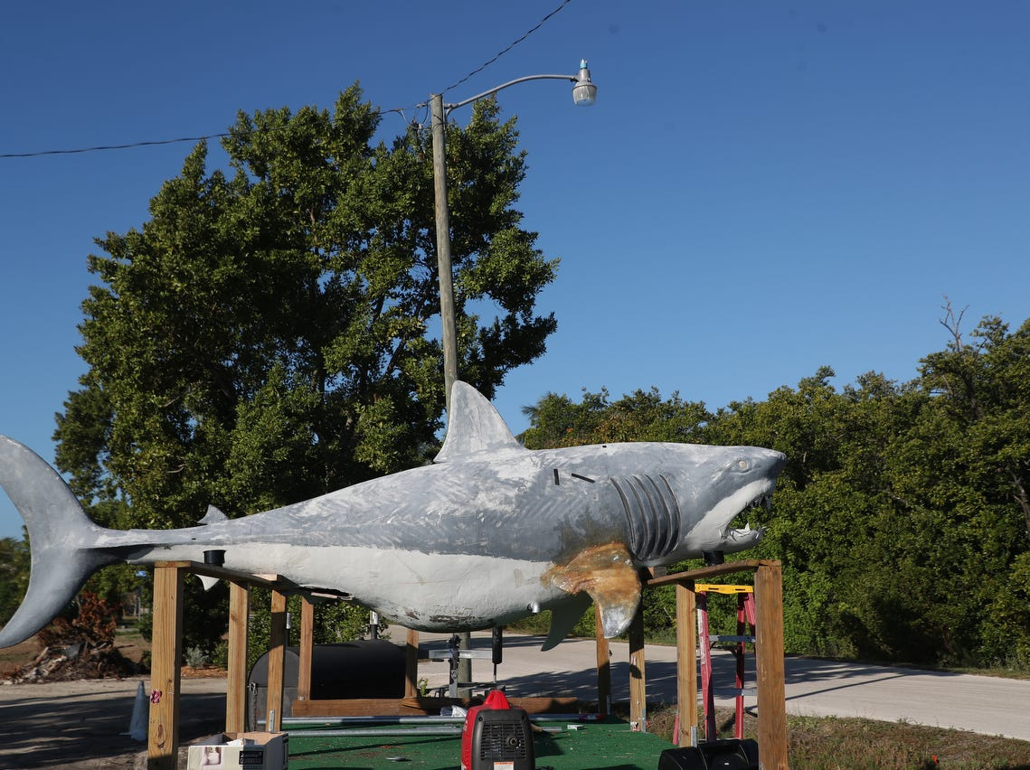 A  large fake shark is repaired by Tracie Moore in the parking lot of the Shark Bar and Grill on San Carlos Island on Fort Myers Beach Wednesday 2/5/2019. Once finished, the shark will make appearances at the Fort Myers Beach annual shrimp parade and at the St. Patrick's Day parade on Fort Myers Beach.