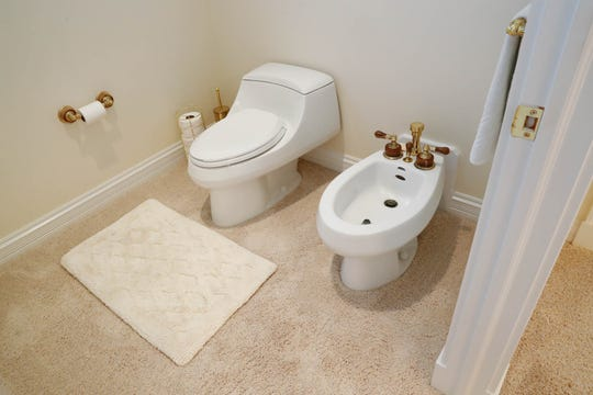 Bidets, which clean your nether regions with a spray of water, have grown in popularity in recent years. This photo shows a separate fixture, but some bidets are simply wands or special seats that fit on existing commodes.