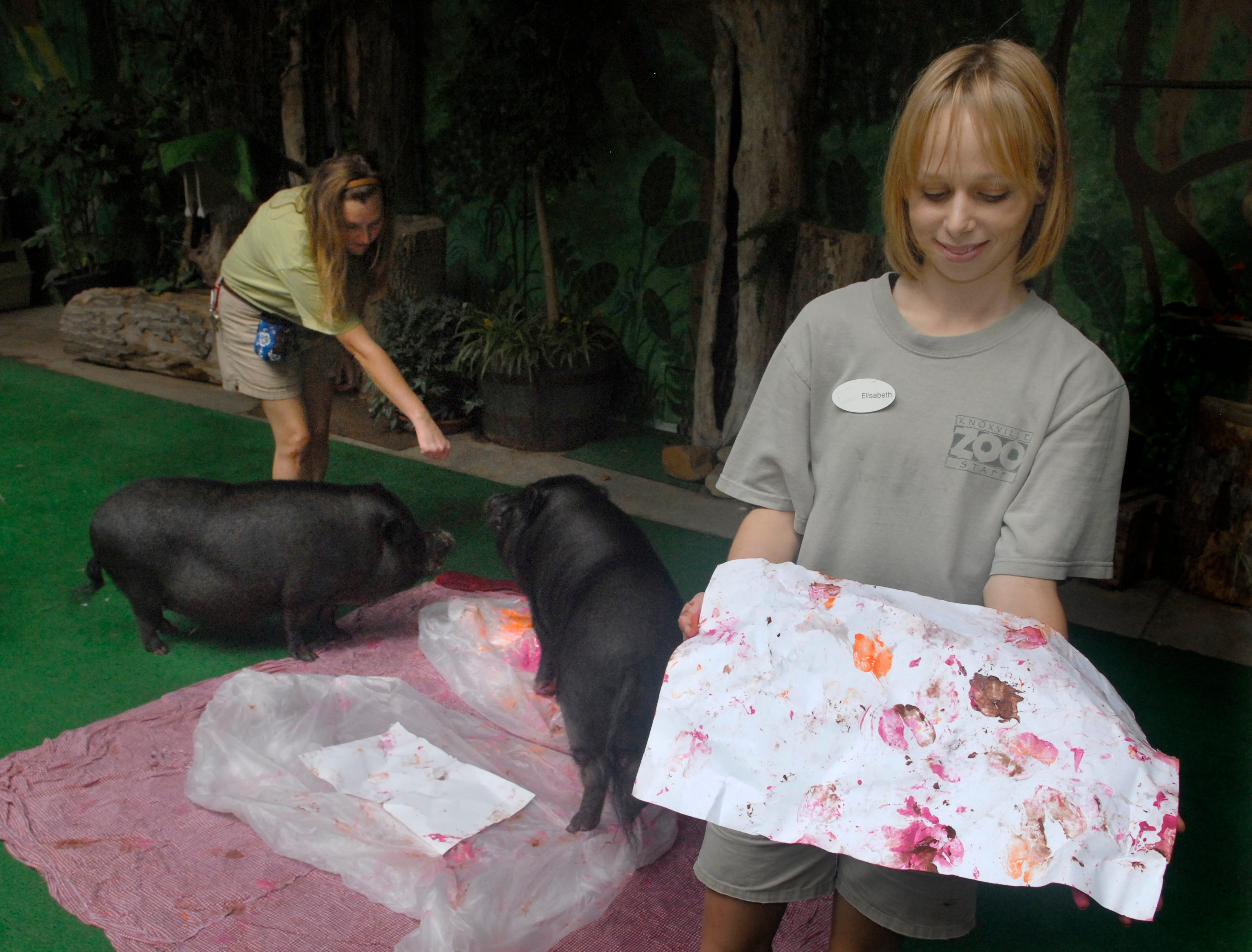 Knoxville Zoo employees Nikki Edwards, left, and Elisabeth Zafiris supervise a couple of pot bellied pigs Wednesday as they create their works of art.