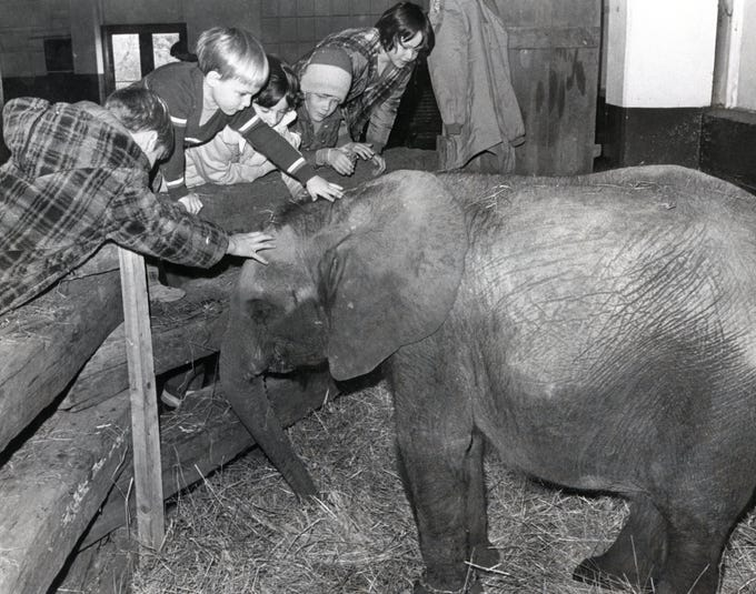 Children pet elephant Petunia at the zoo in November 1975.