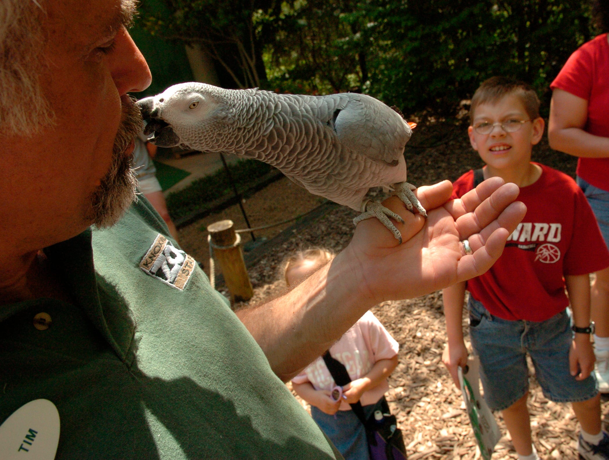 Tim Adams, Knoxville Zoo's Director of Education, gets a kiss from Einstein the African Gray Parrot as Paul Thomas Knickelbein, 9, watches after the bird show at The Knoxville Zoo Tuesday afternoon. Adams was Einstein's first trainer at the zoo and he and the bird still have a special bond.