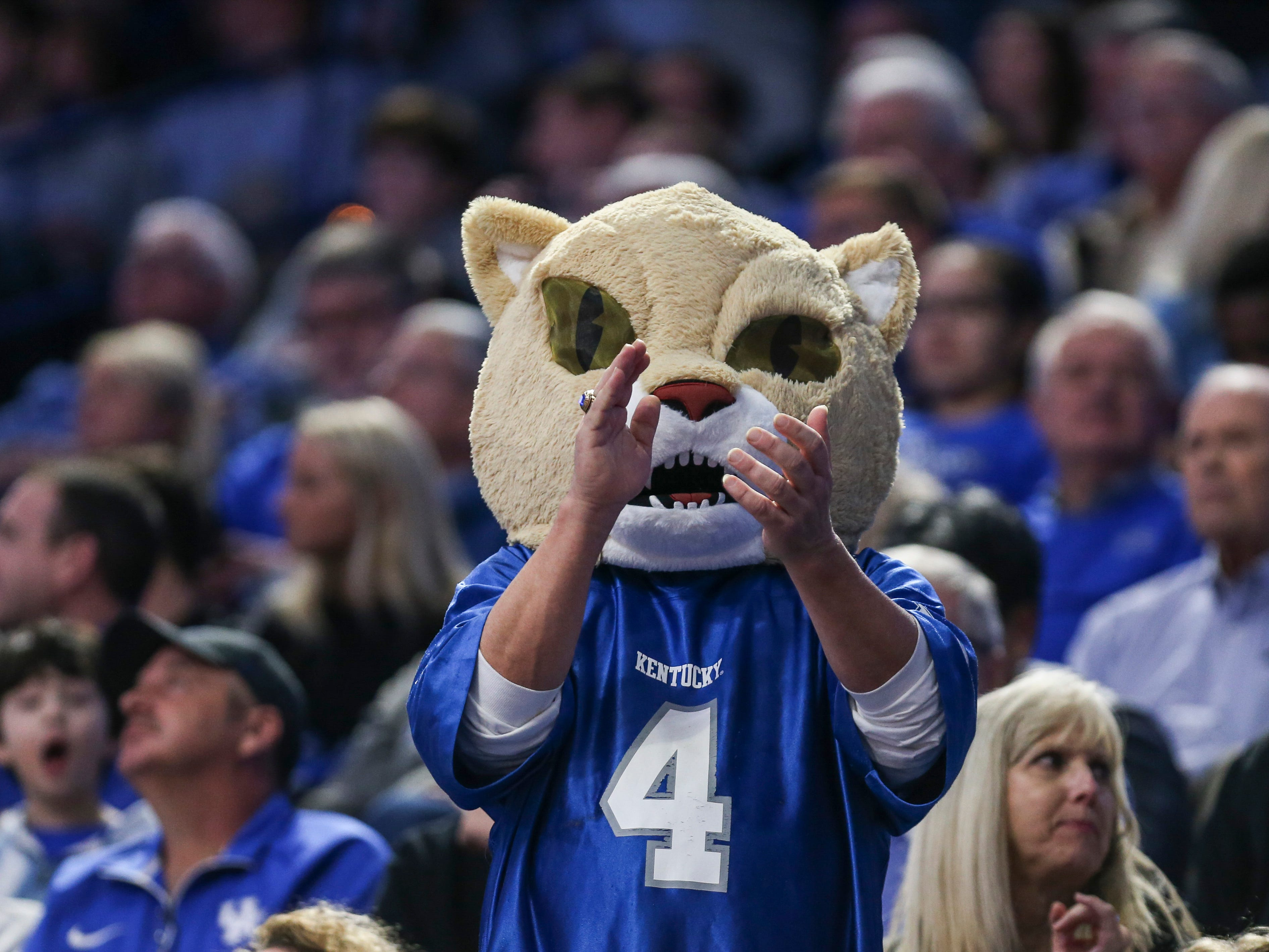 A Kentucky fan wore a Wildcat head while cheering during the South Carolina game. Feb. 5, 2019