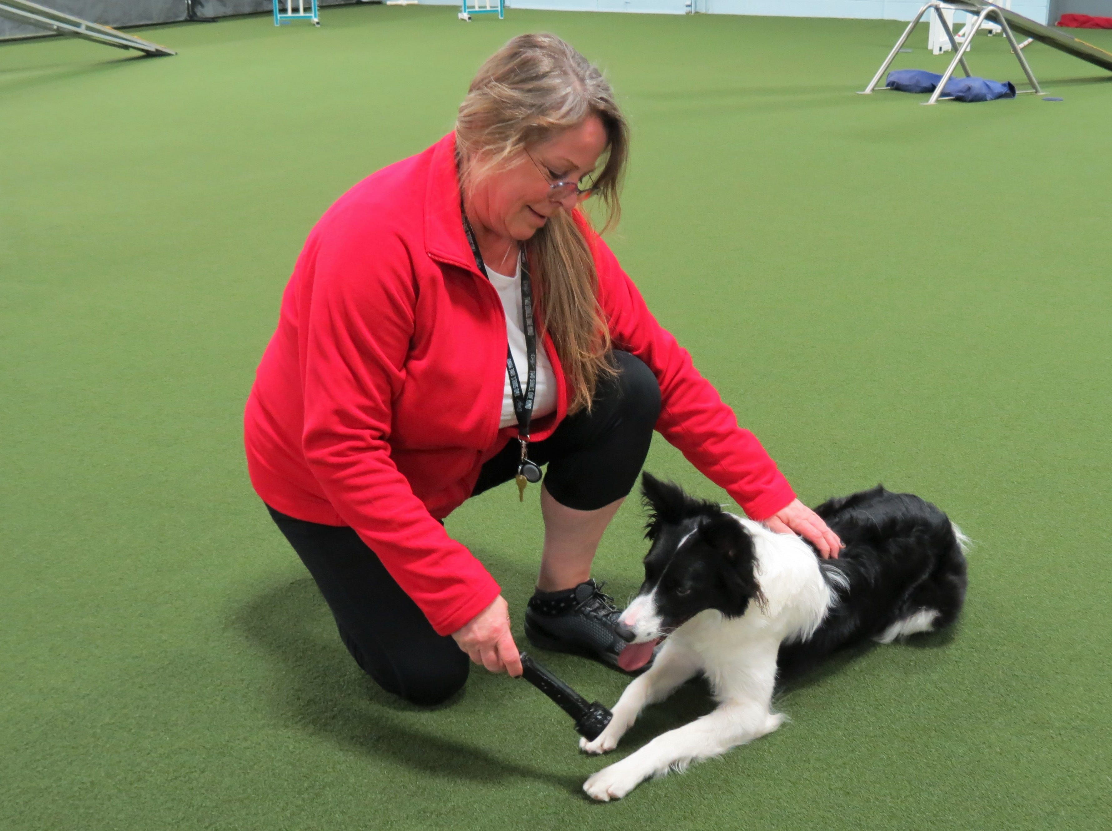 D. Lynne Luckow and her border collie Power.