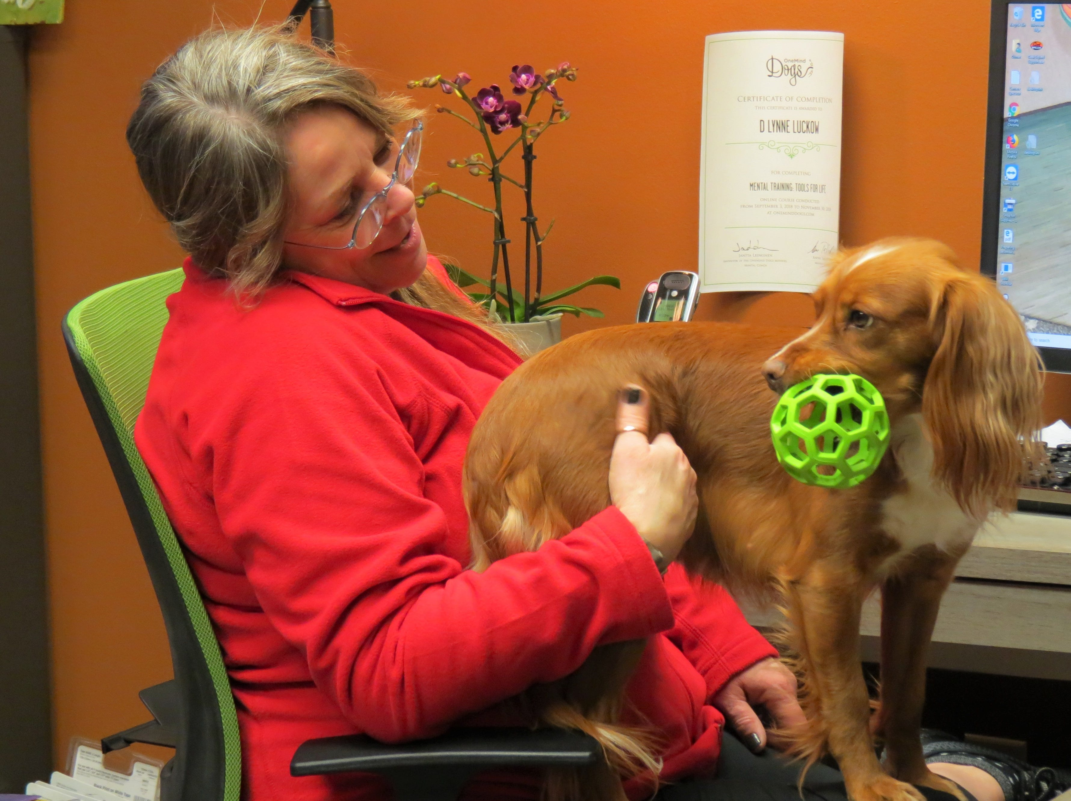Redline training center owner D. Lynne Luckow plays with her dog Snap in her office.