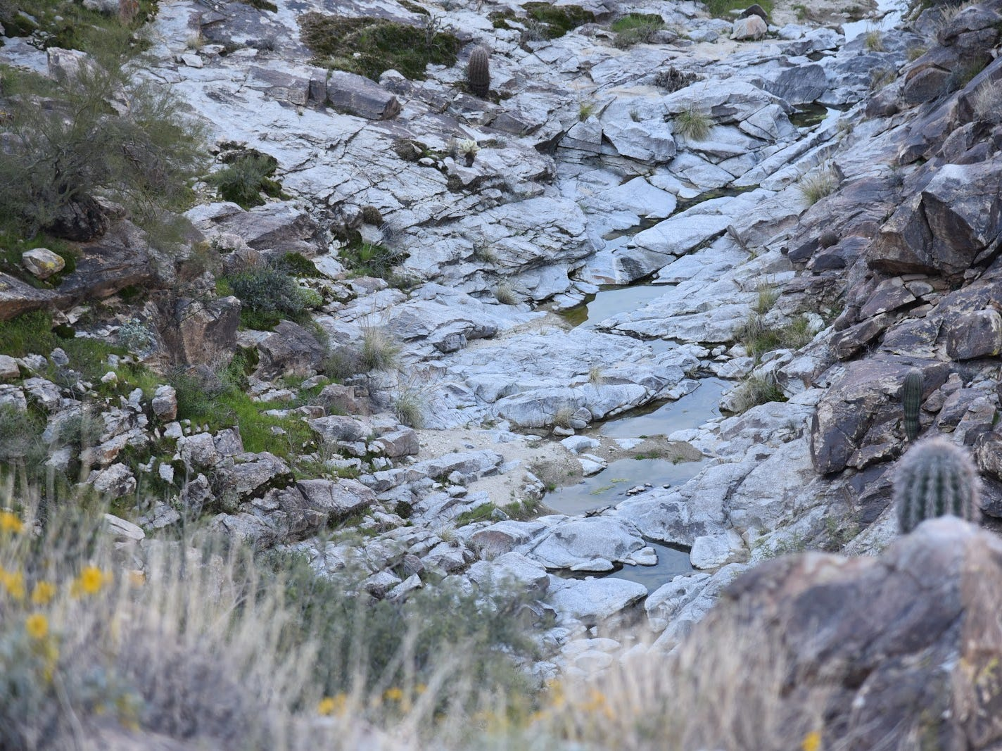 "The ""white tanks"" can be seen at the bottom of Mesquite Canyon."