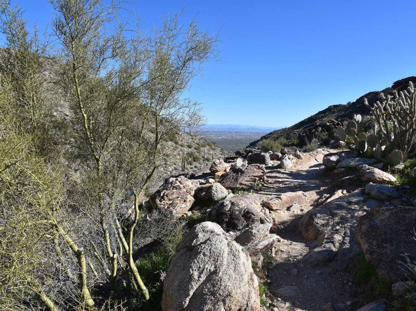 An edge-hugging segment of Mesquite Canyon Trail.